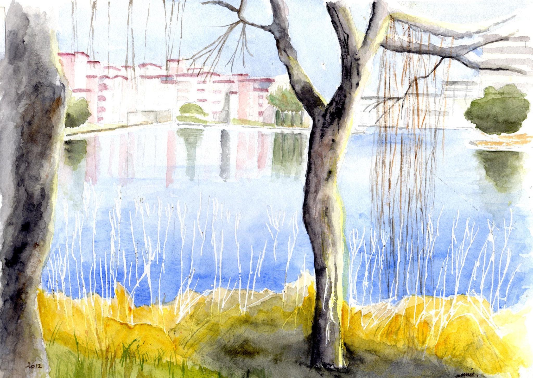 Le lac de la Reynerie