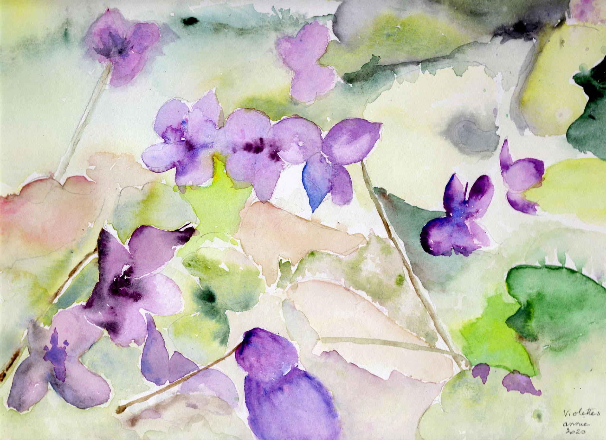 Les violettes d'après une photo de Jehanne SBX