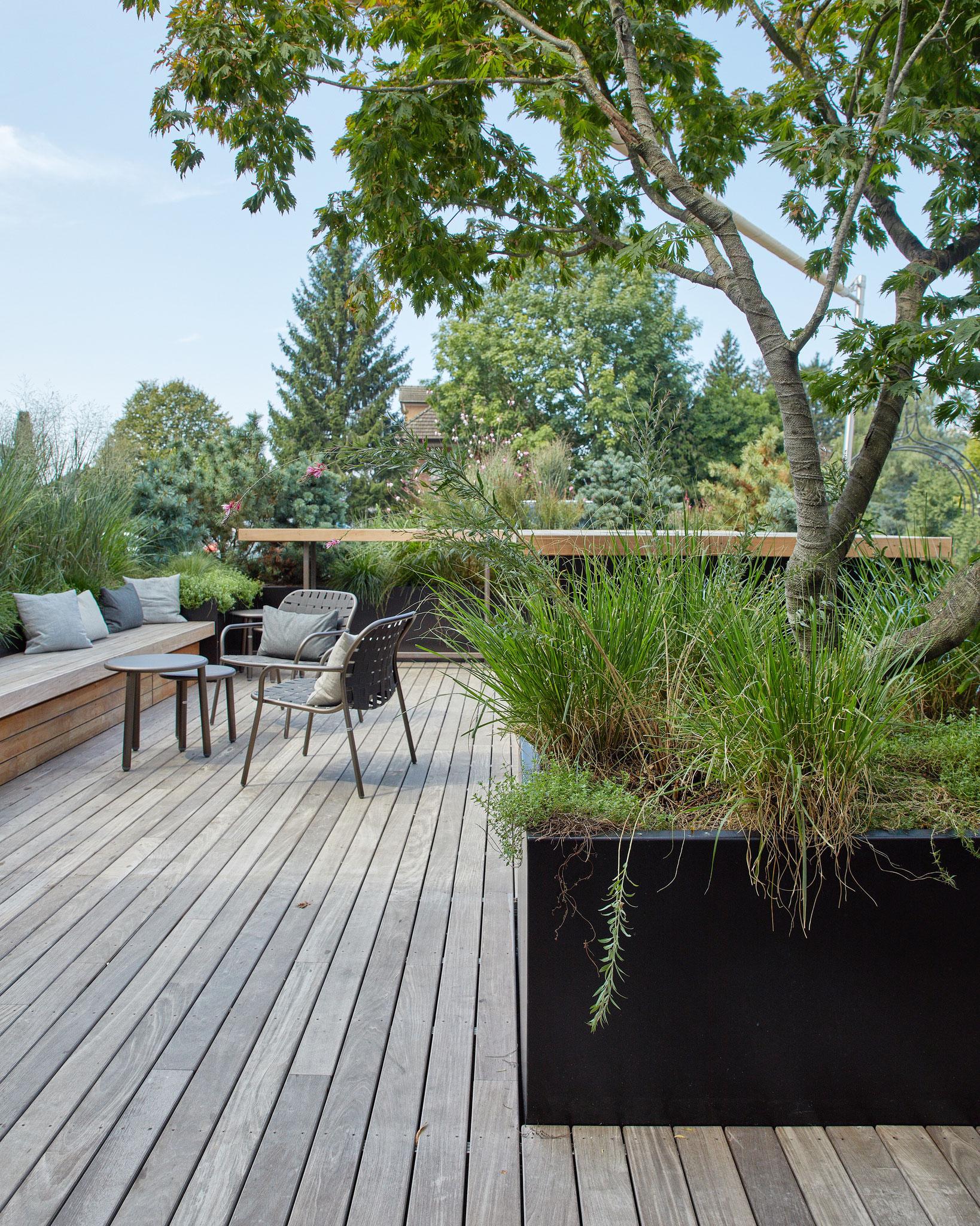 Der Gartendesigner rät dazu, die Natur nahe an das Haus heranzuholen, damit man auch von drinnen der Pracht frönt – und nicht bloss auf die Gartenmöbel blickt.