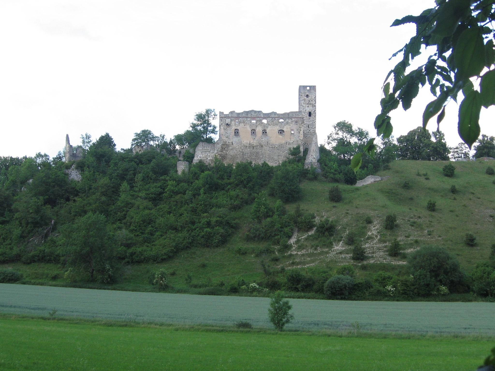 Ruine Niederhaus