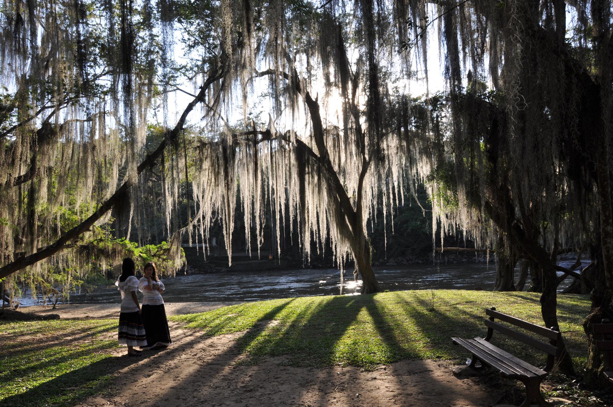 QUE HACER?   Visita de naturaleza en el Parque Gallineral de San Gil