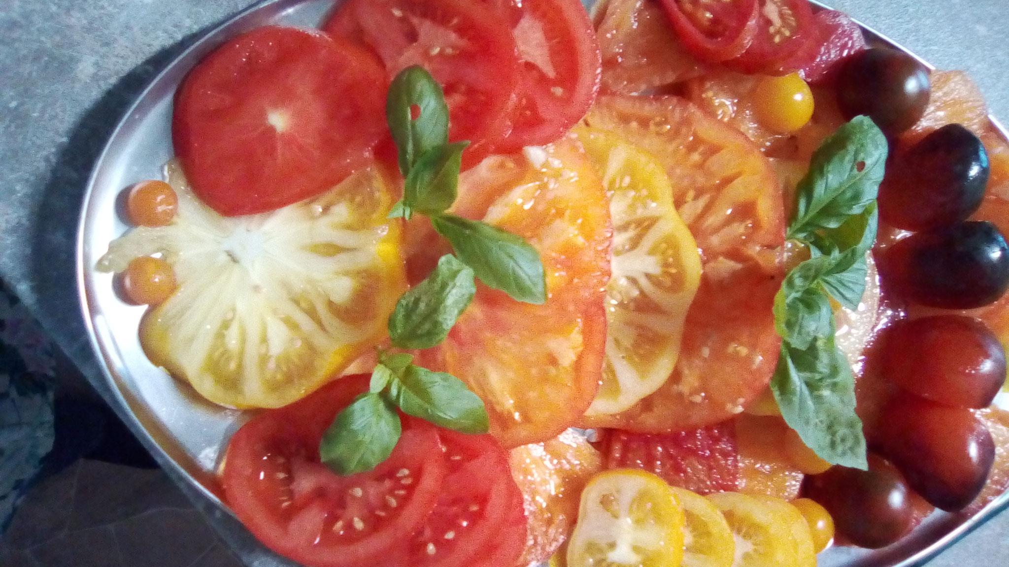 Bunte Tomatenplatte aus dem hauseigenem Garten