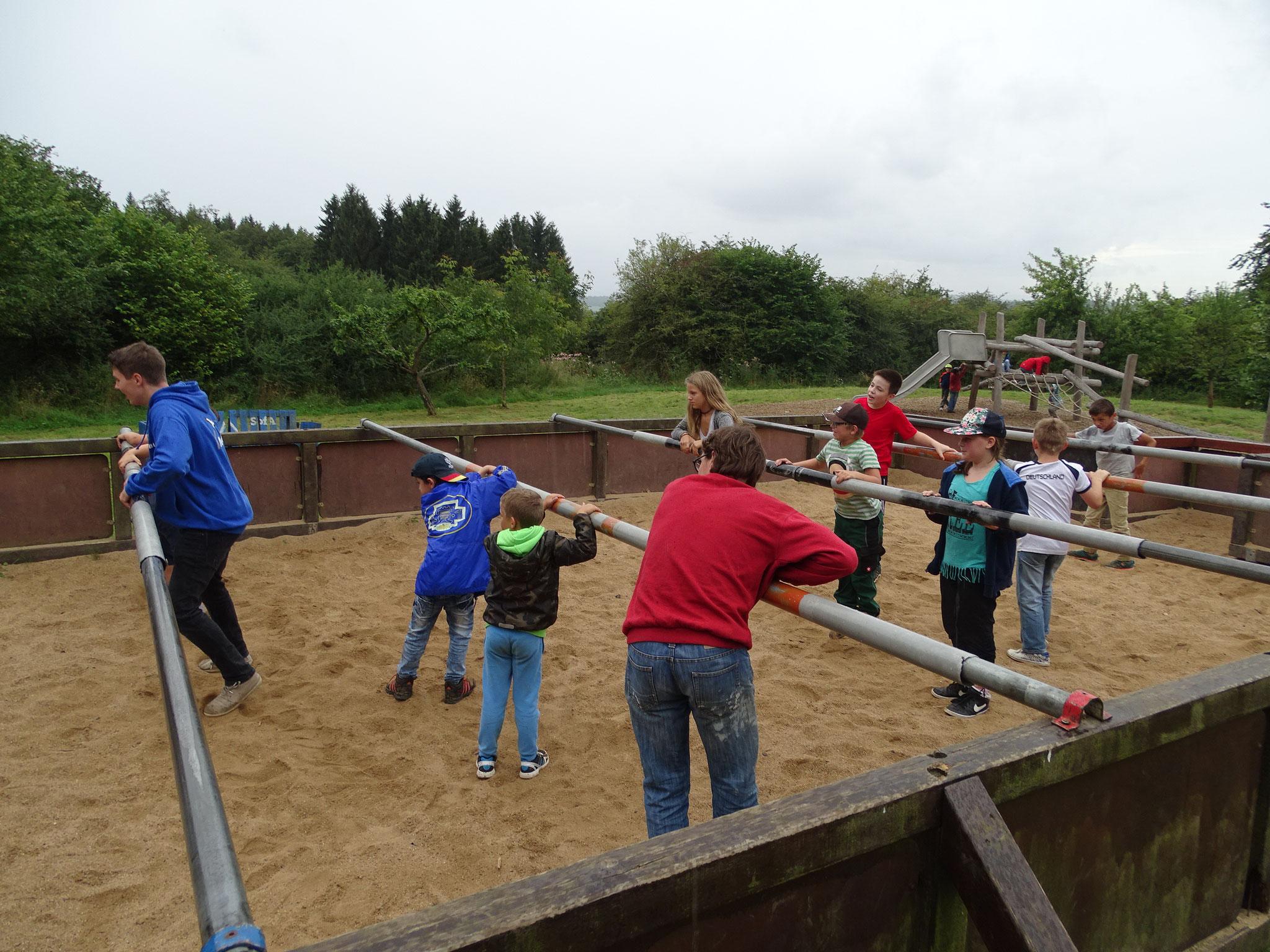 Der Spielplatz wurde rege genutzt.