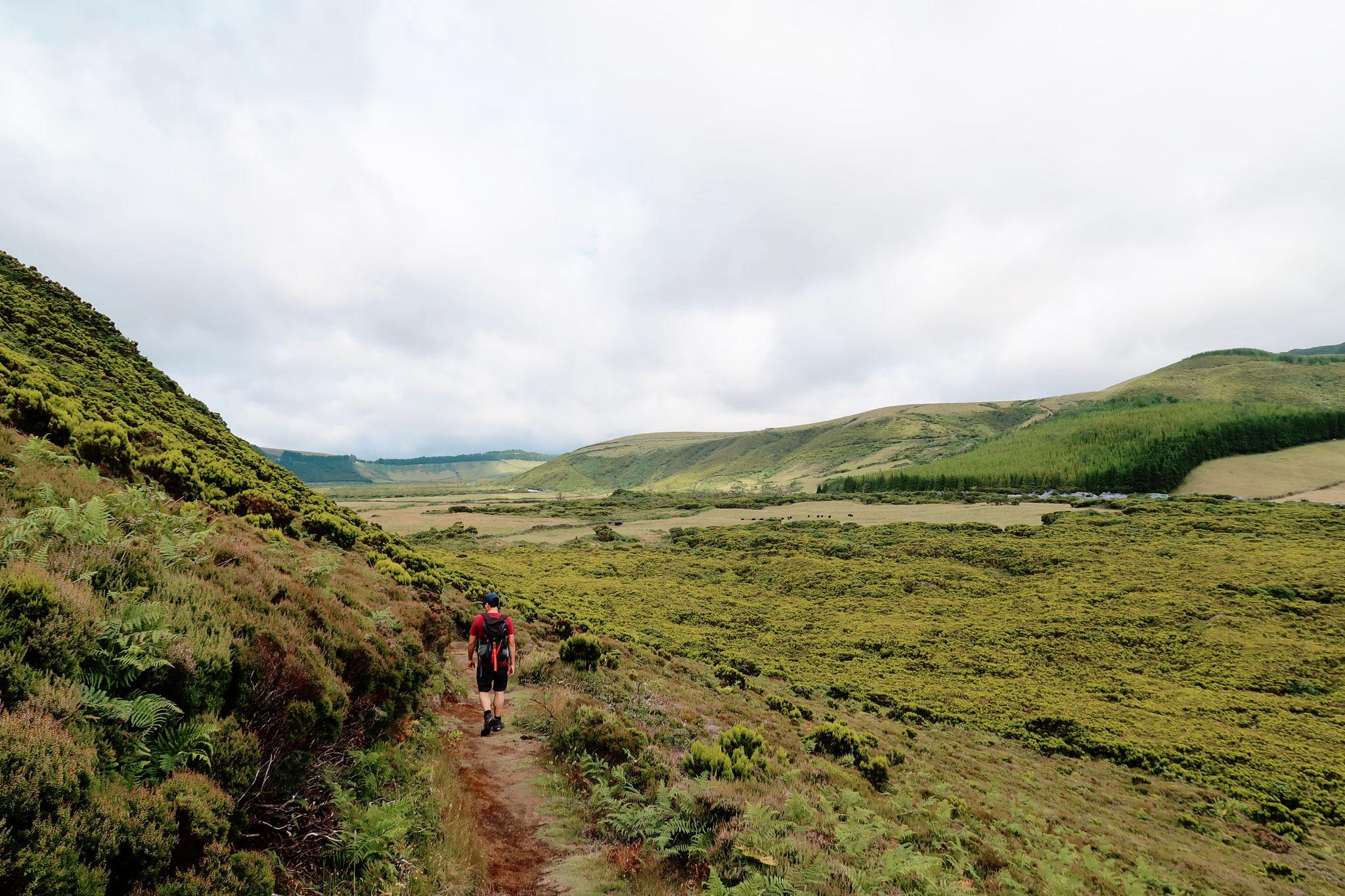 Heidelandschaft auf Terceira