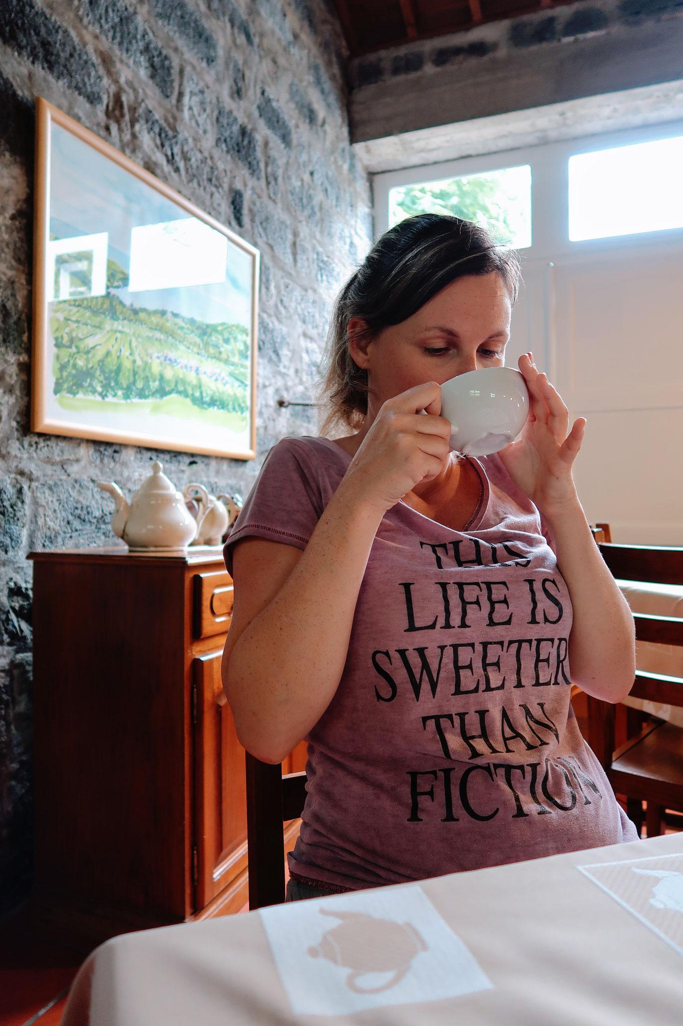 Teeverkosteung Cha Porto Formoso auf Sao Miguel