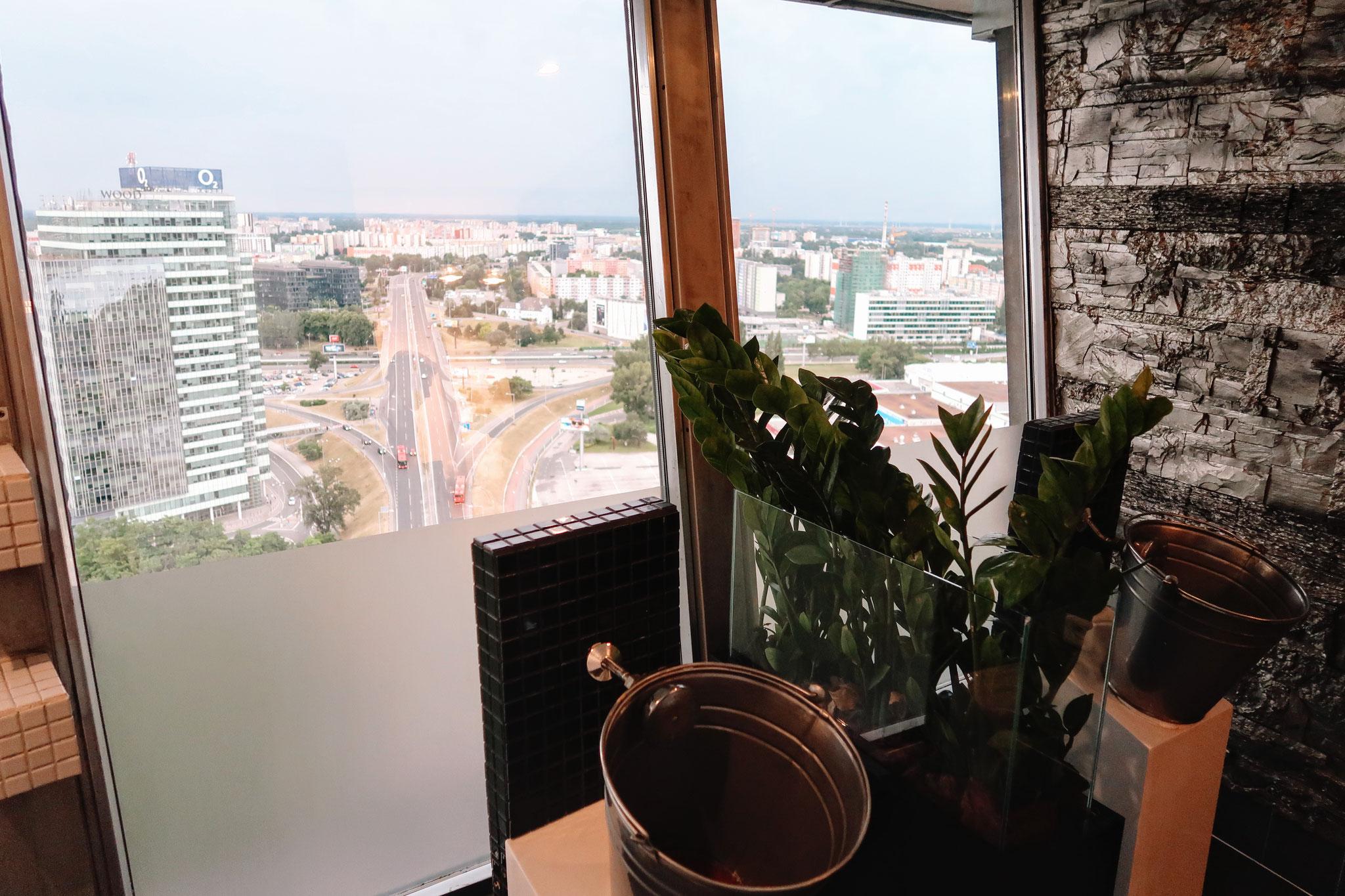 WC mit Aussicht im Turm der SNP Brücke