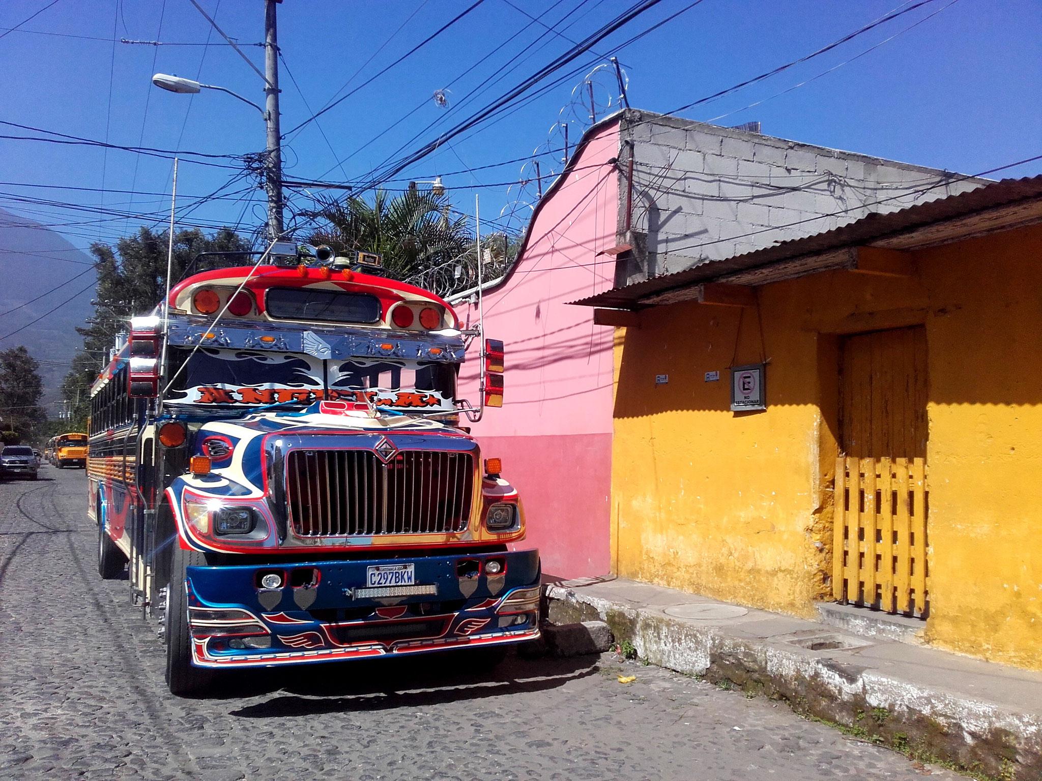 Bus Antigua
