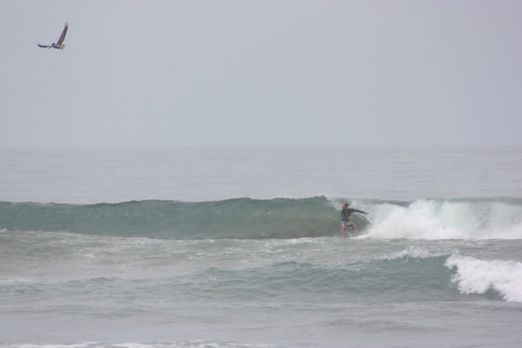 Surfing in Ayampe