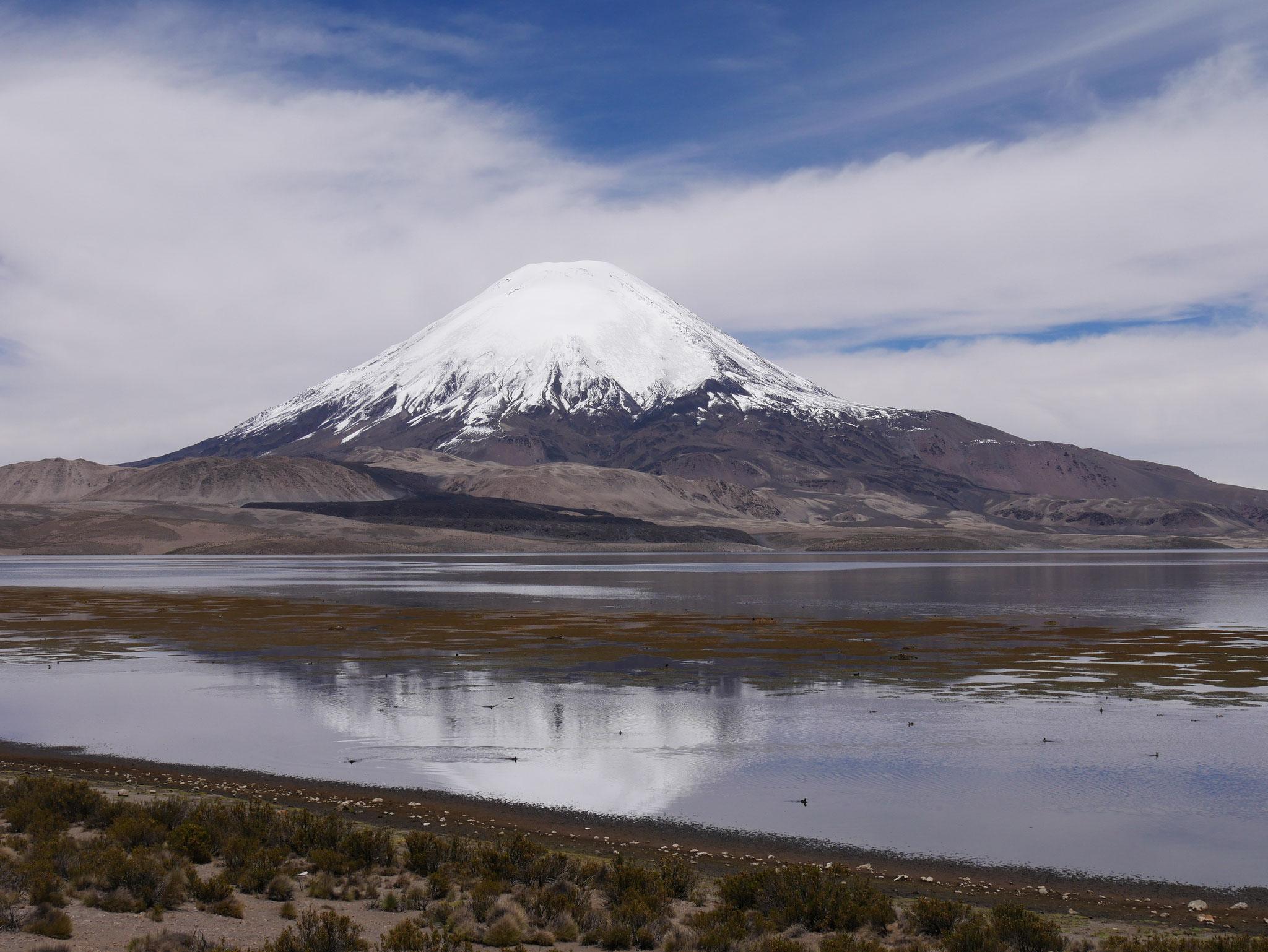 Lauca Nationalpark, Chile
