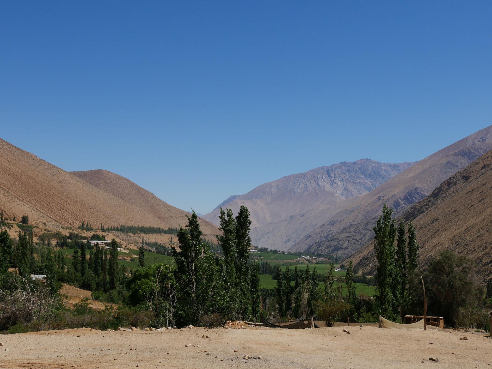 Valle de Elqui