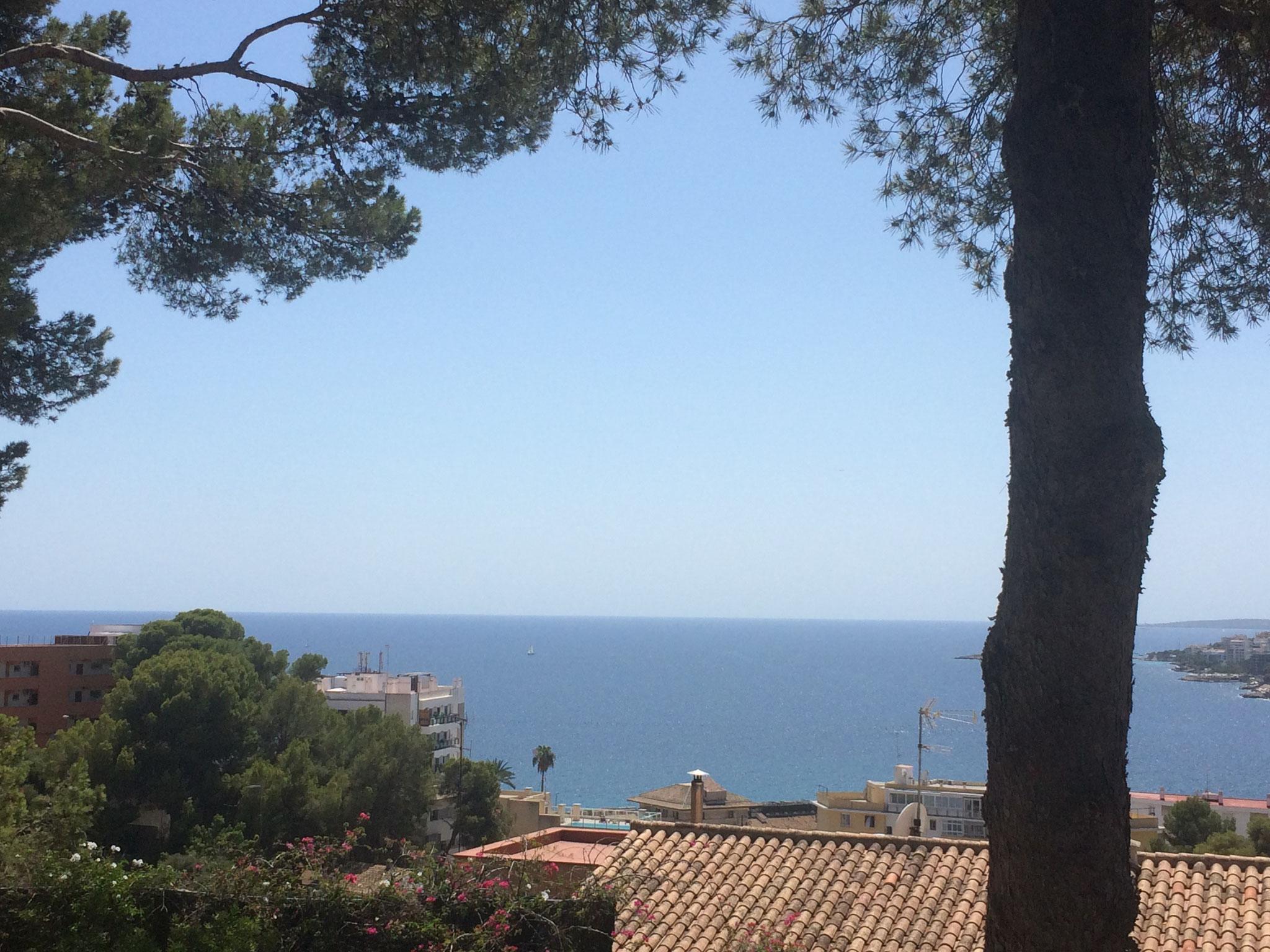 die Bucht von Palma