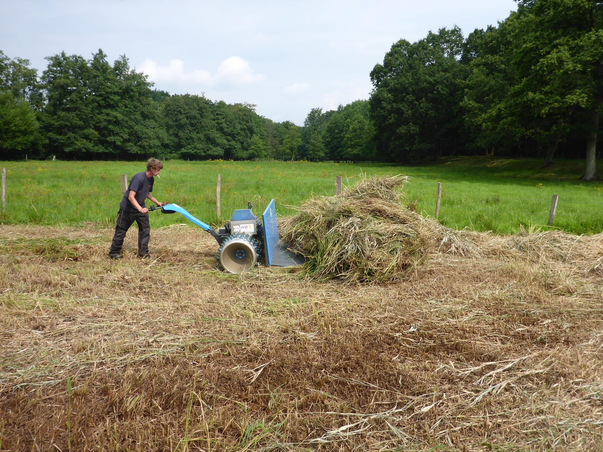 Die Alternative: Der Einsatz von Spezialgerät für nasse Flächen. Dies hoffen wir dieses Jahr mit Hilfe von Spenden durchführen zu können - nächstes Jahr können wir dann hoffentlich wieder selber anpacken!