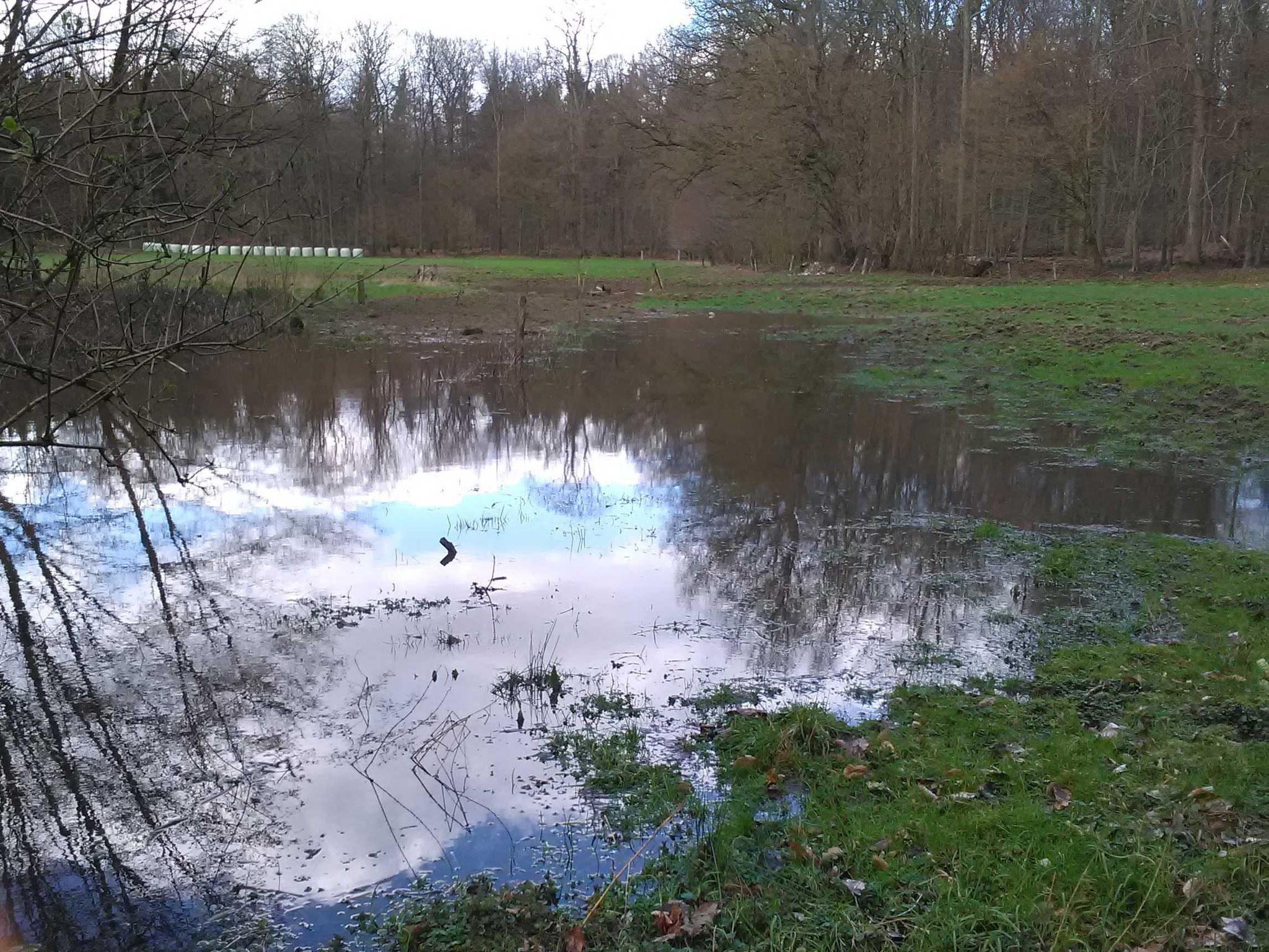 Das war mal der Entwässerungsgraben.