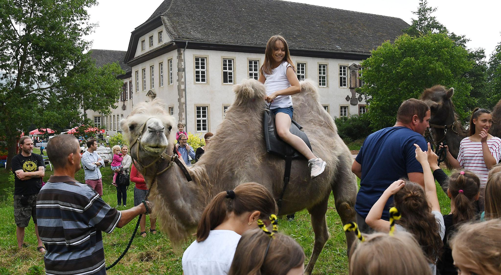 Kamelreiten im Klostergarten bringt die Kinderaugen zum Strahlen. Foto: Maria Hopp