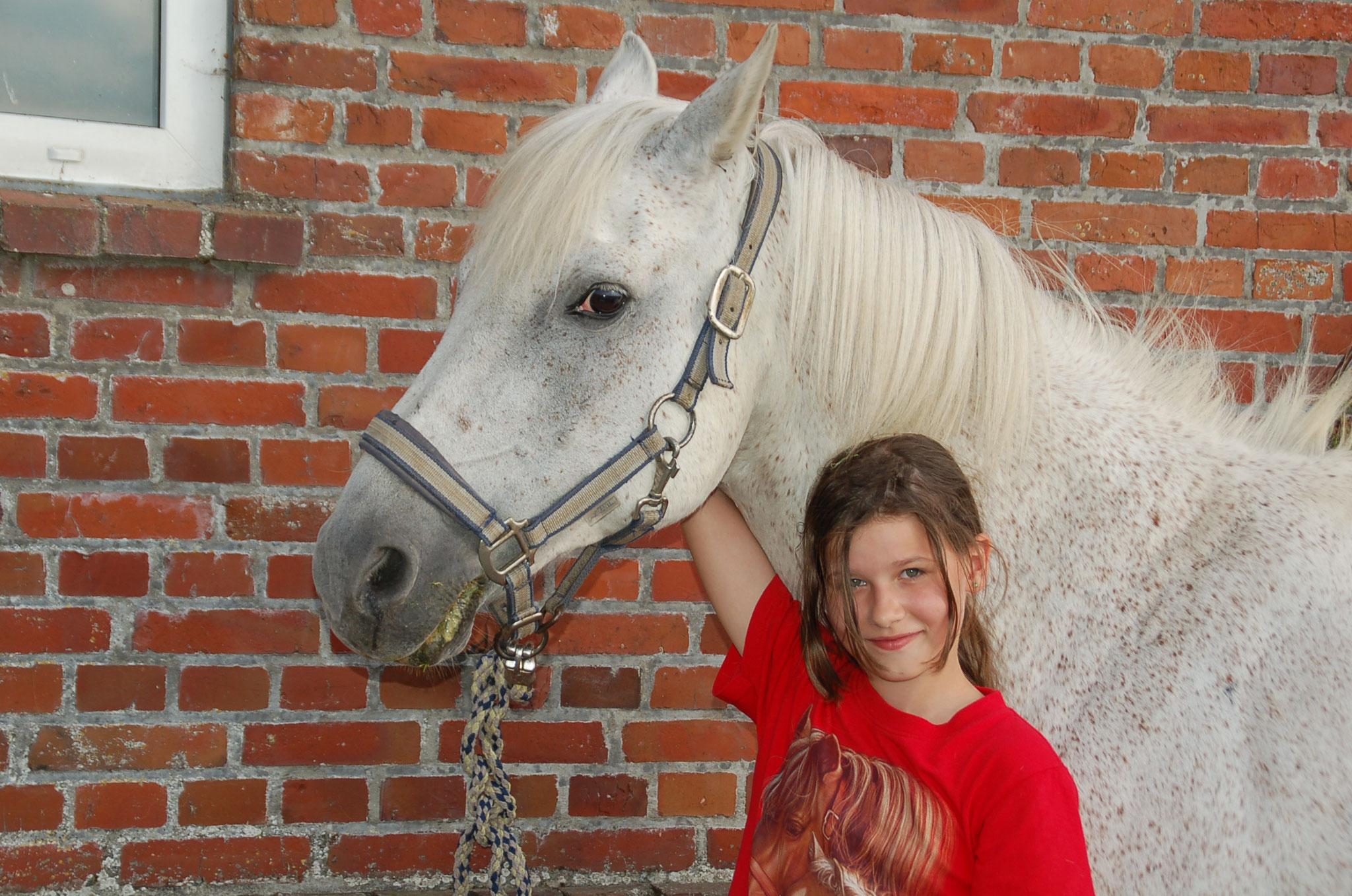 Nico ist ein tolles Pony zum Anlehnen ...