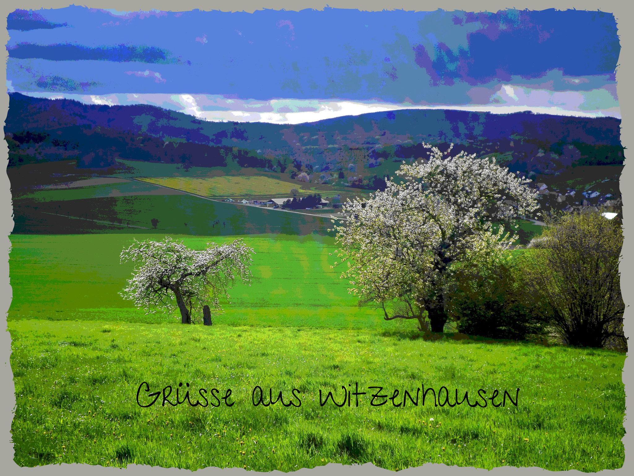 Blühbäume Witzenhausen