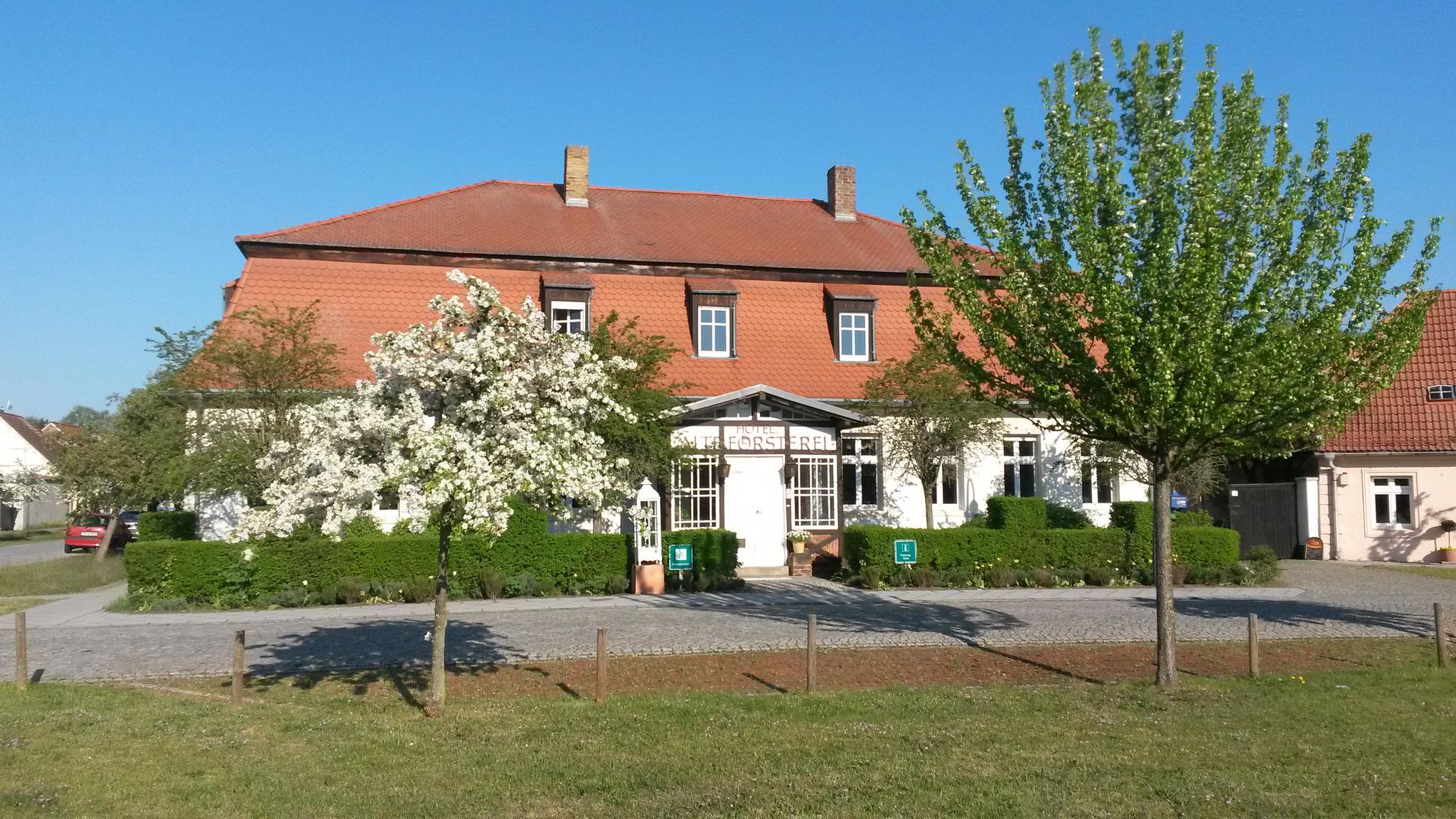 Hotel Alte Försterei Kloster Zinna