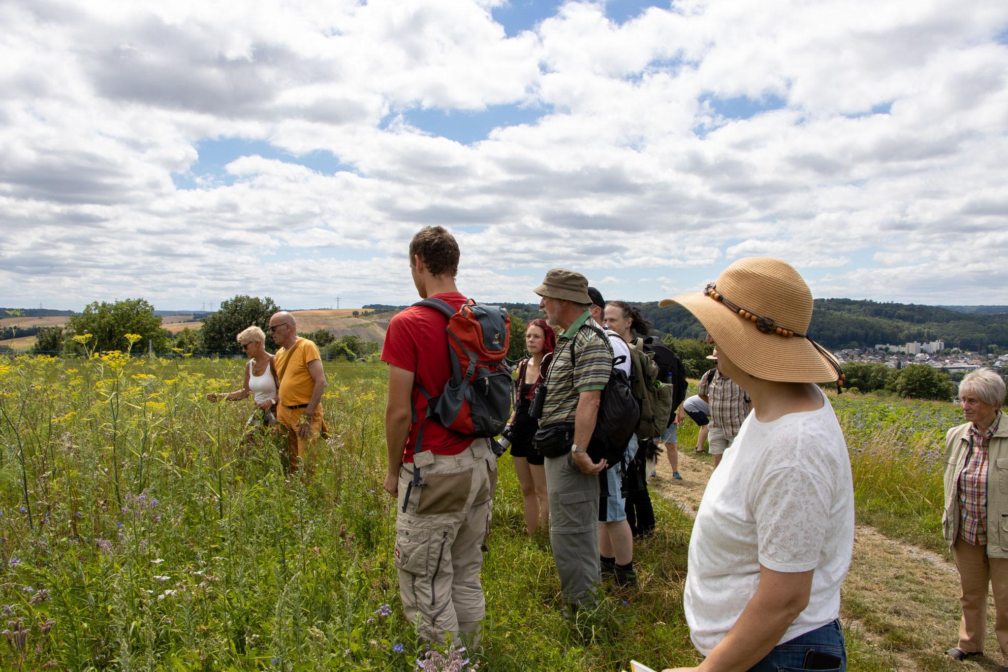 Teilnehmer der Wanderung (HB)