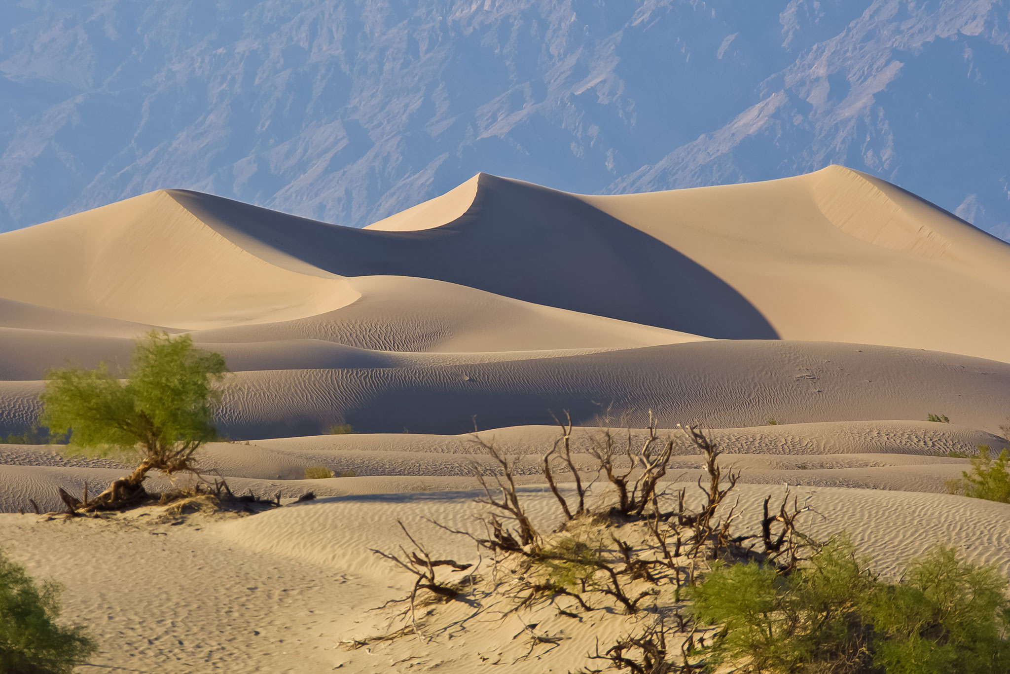 © Hans G. Lehmann |  Sanddünen in Death Valley, Kalifornien, USA