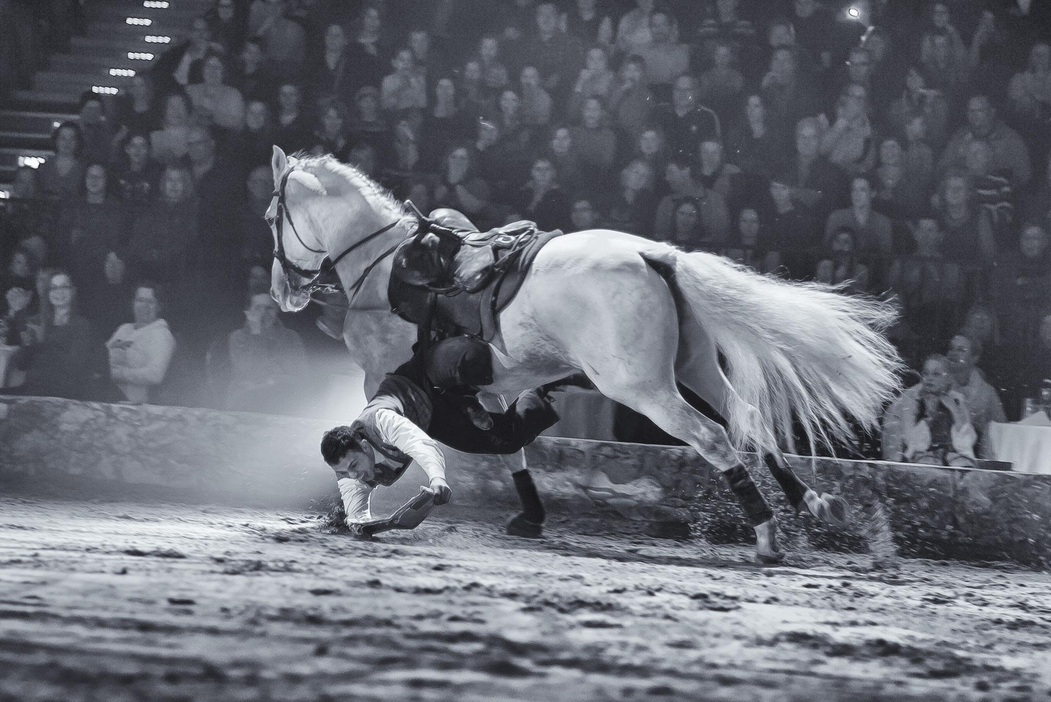 © Hans G. Lehmann | Horseback stunts during horse show Apassionata, Hamburg