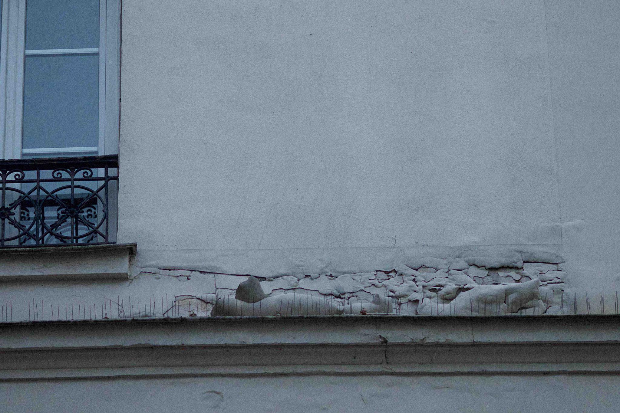 dégradation façade en plâtre, avec une forte condensation intérieure