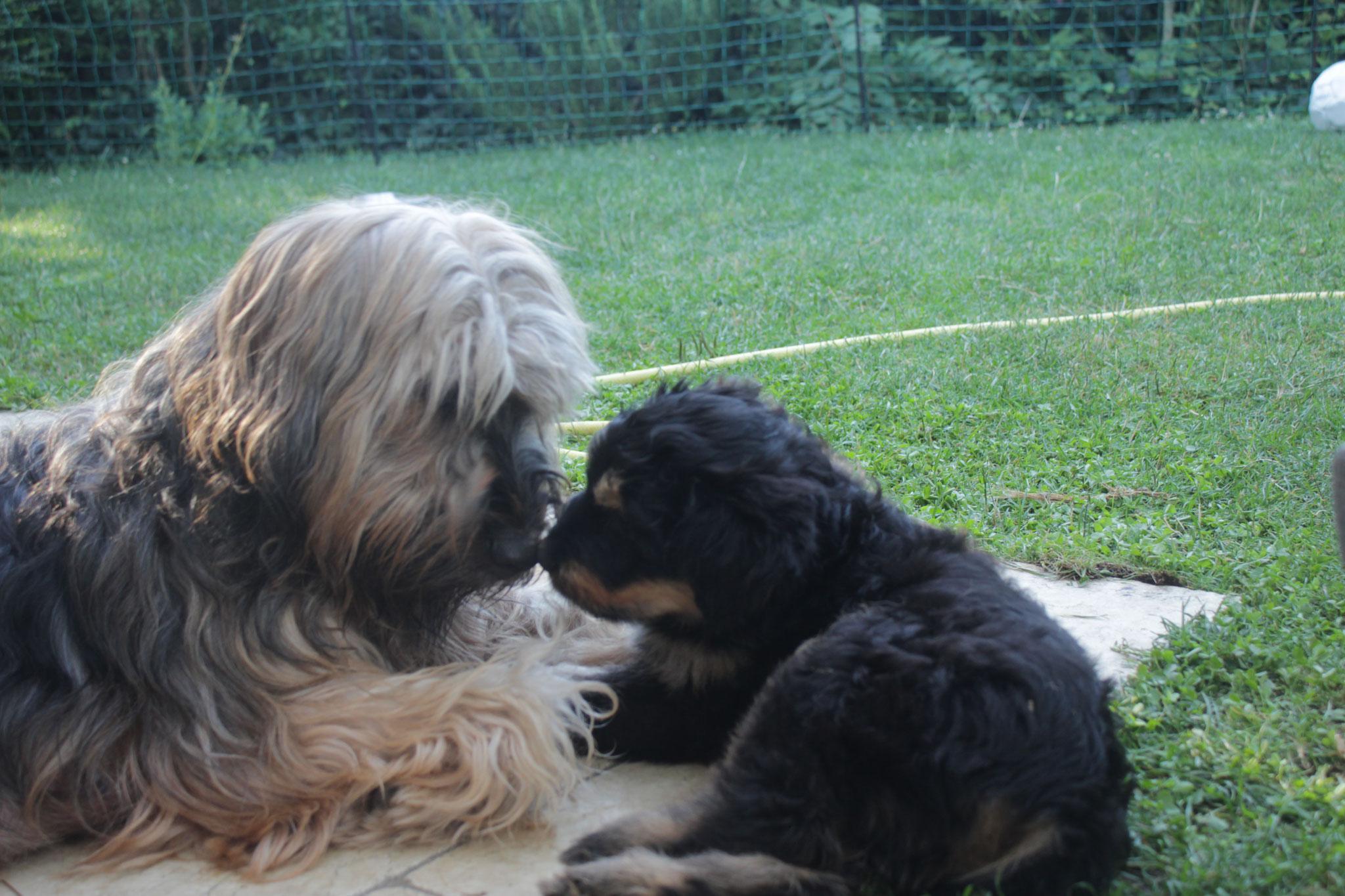 Herr Rot, Finn mit Mama Luise