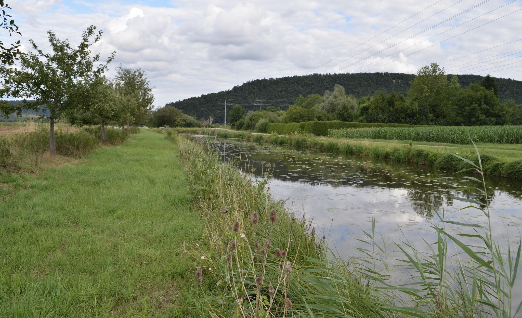 LDM-Kanal