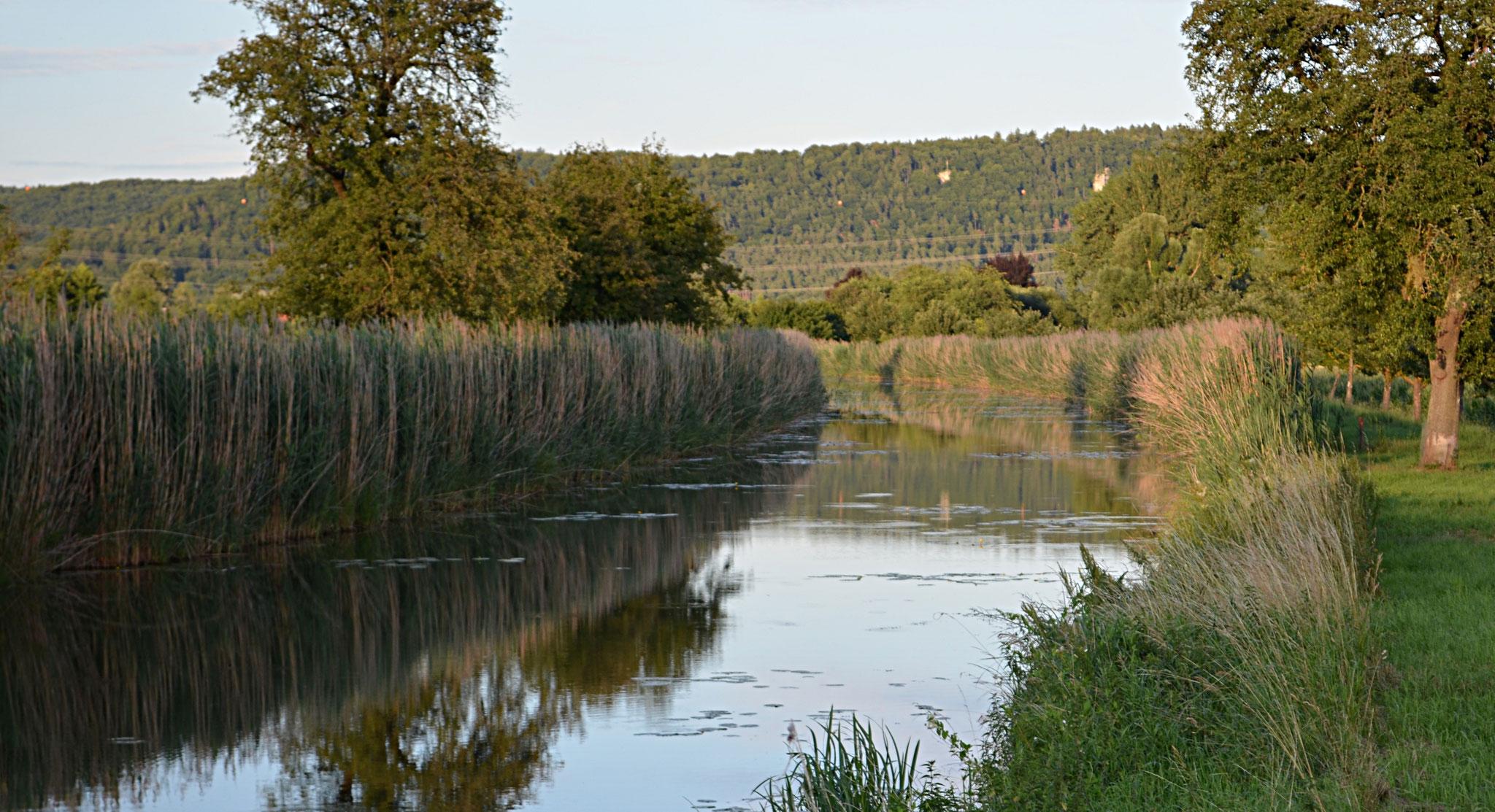 LDM Kanal