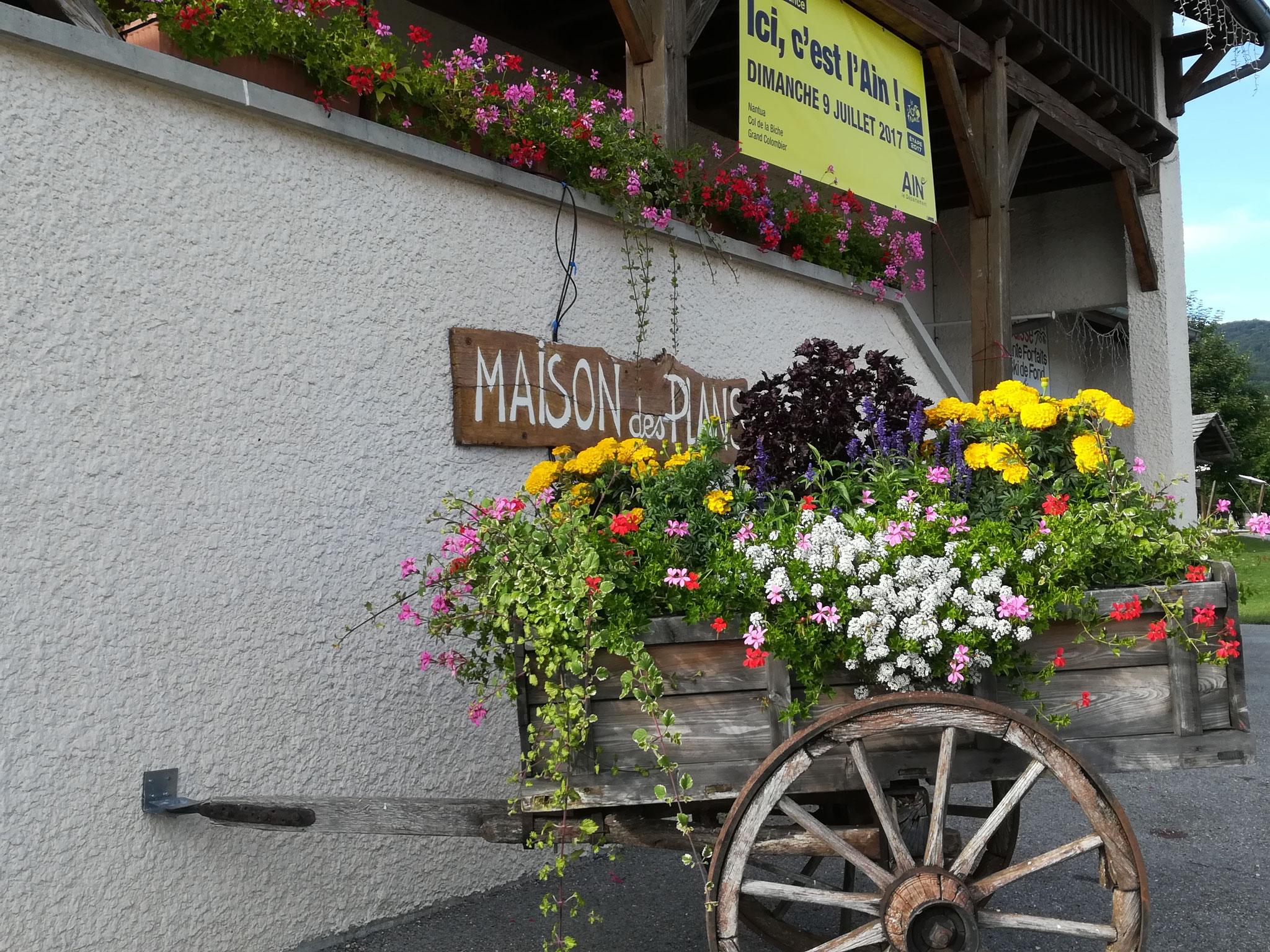 La Maison des Plans avec sa charette fleurie