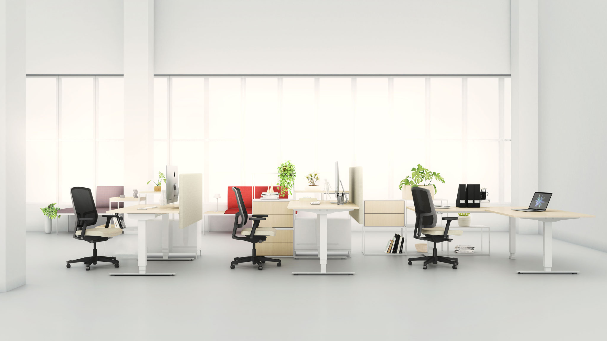EFG Sit-stand desks