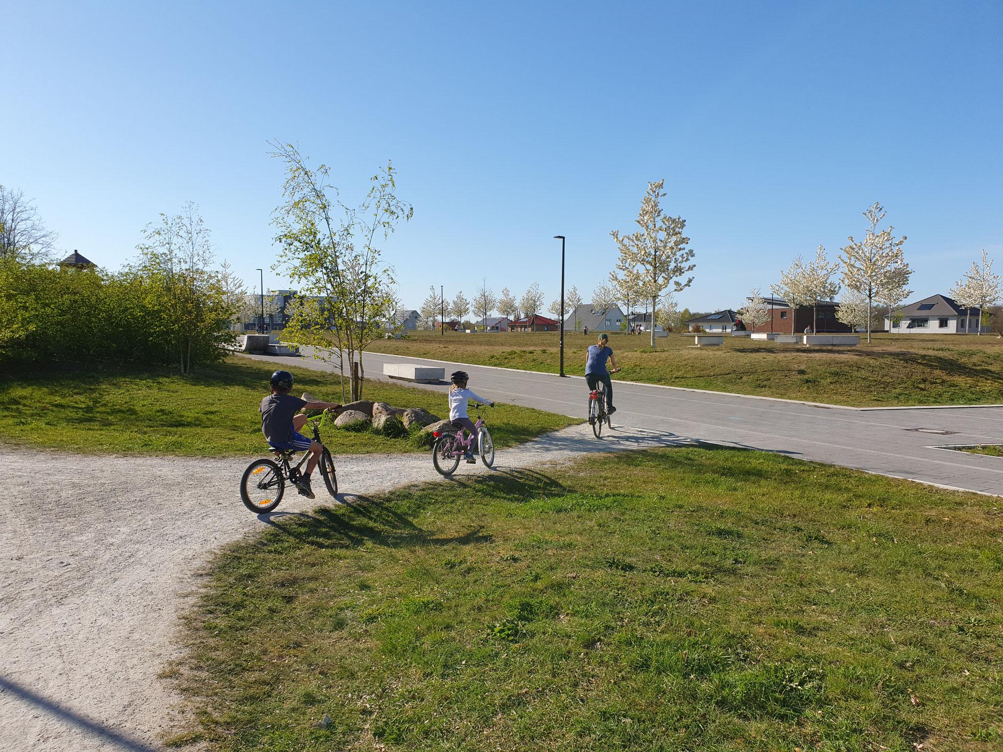 """Blick auf den """"Stadtpark Hanseviertel"""""""