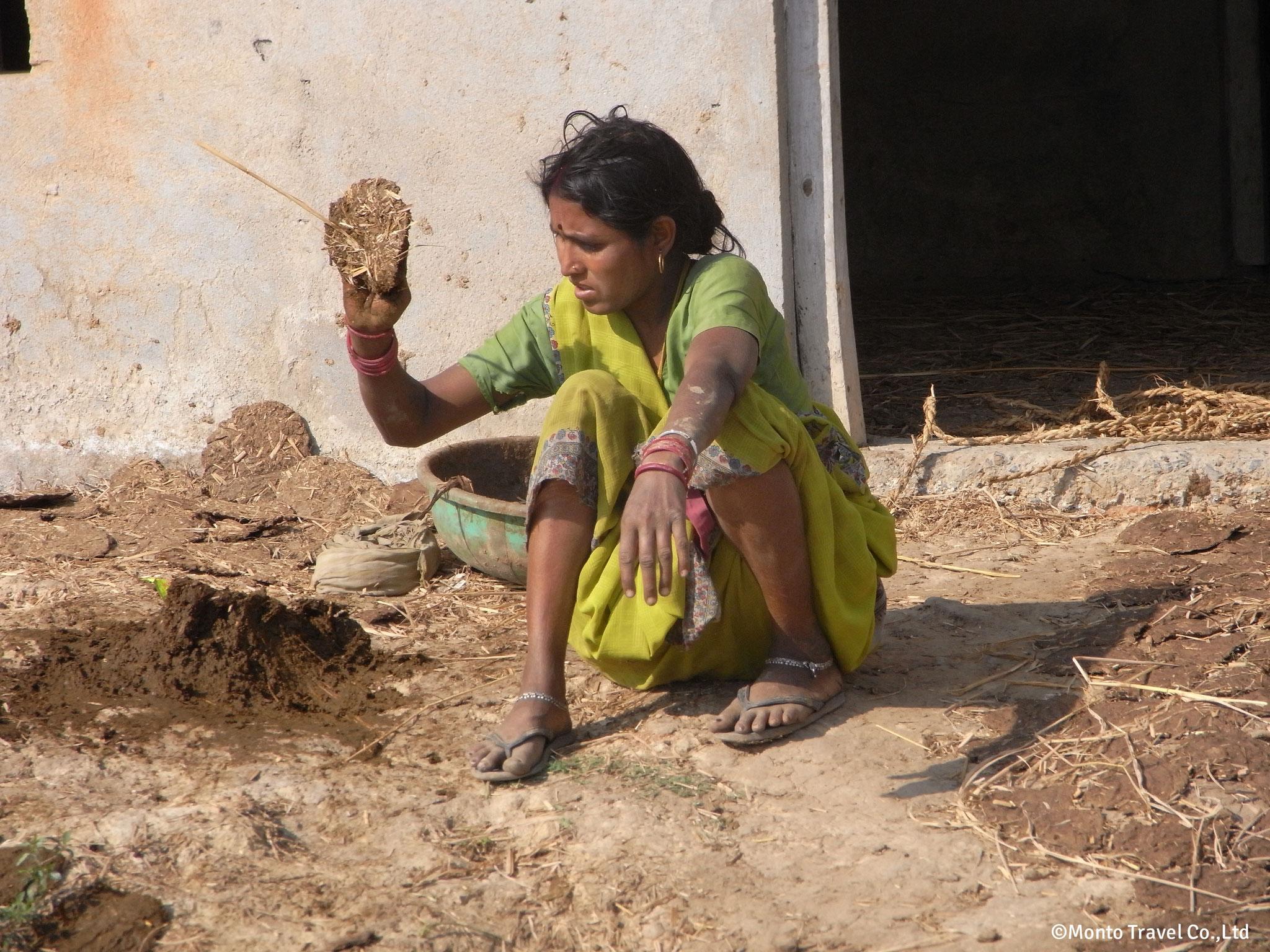 牛糞燃料をこねる女性