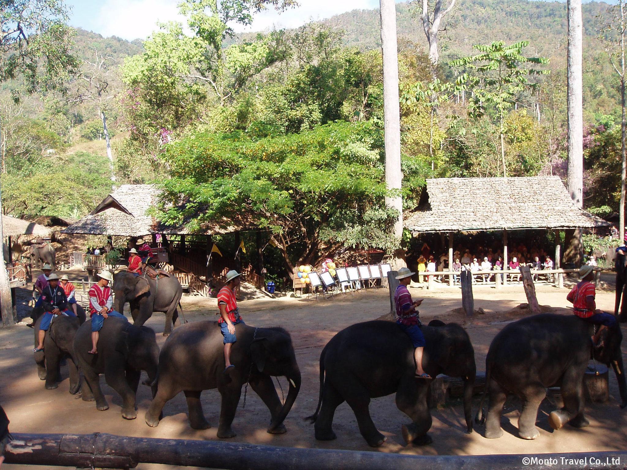 象のキャンプ(チェンマイ)