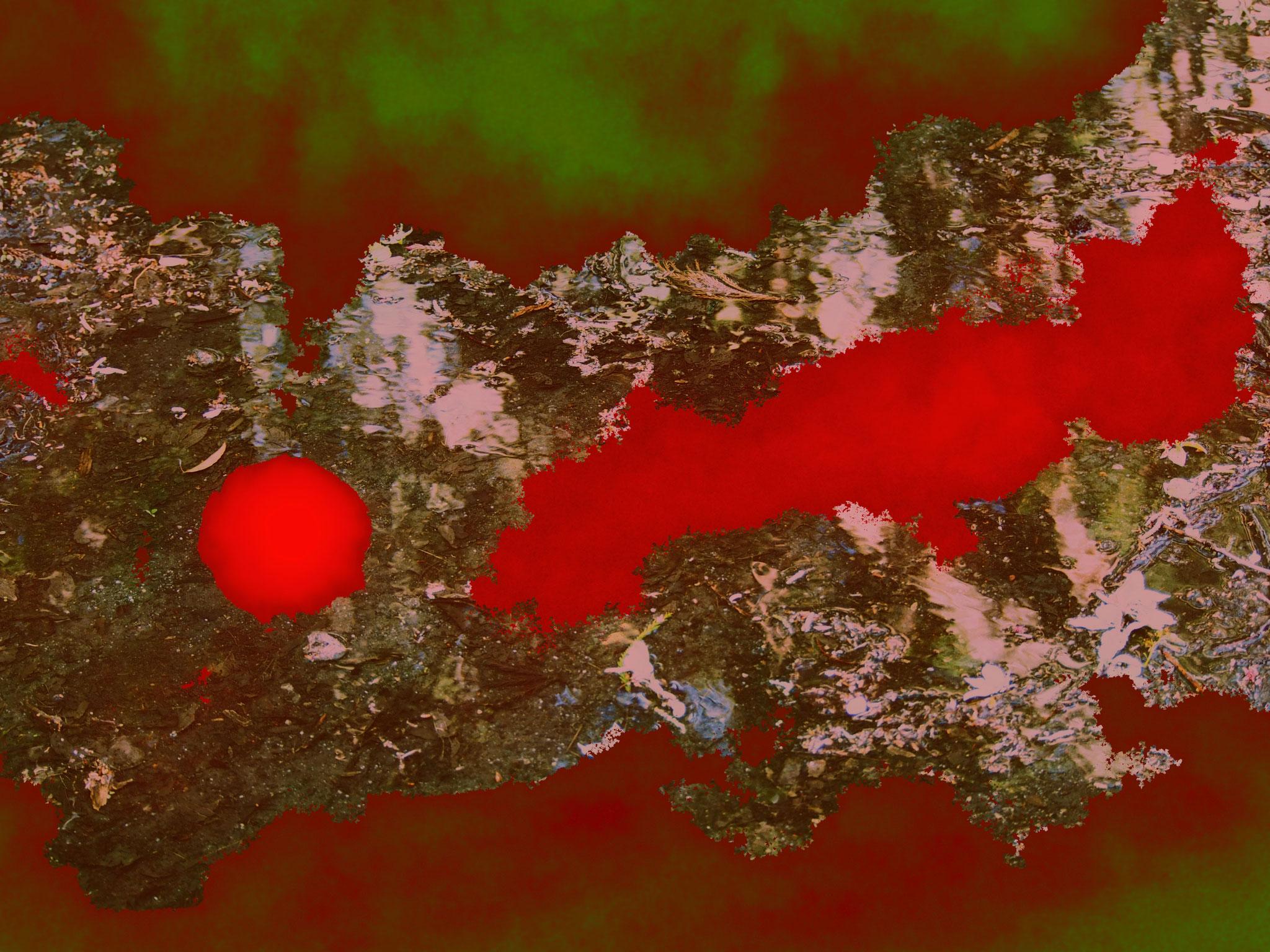 La lune dans le caniveau                                   ©asanuma.brice.cecile