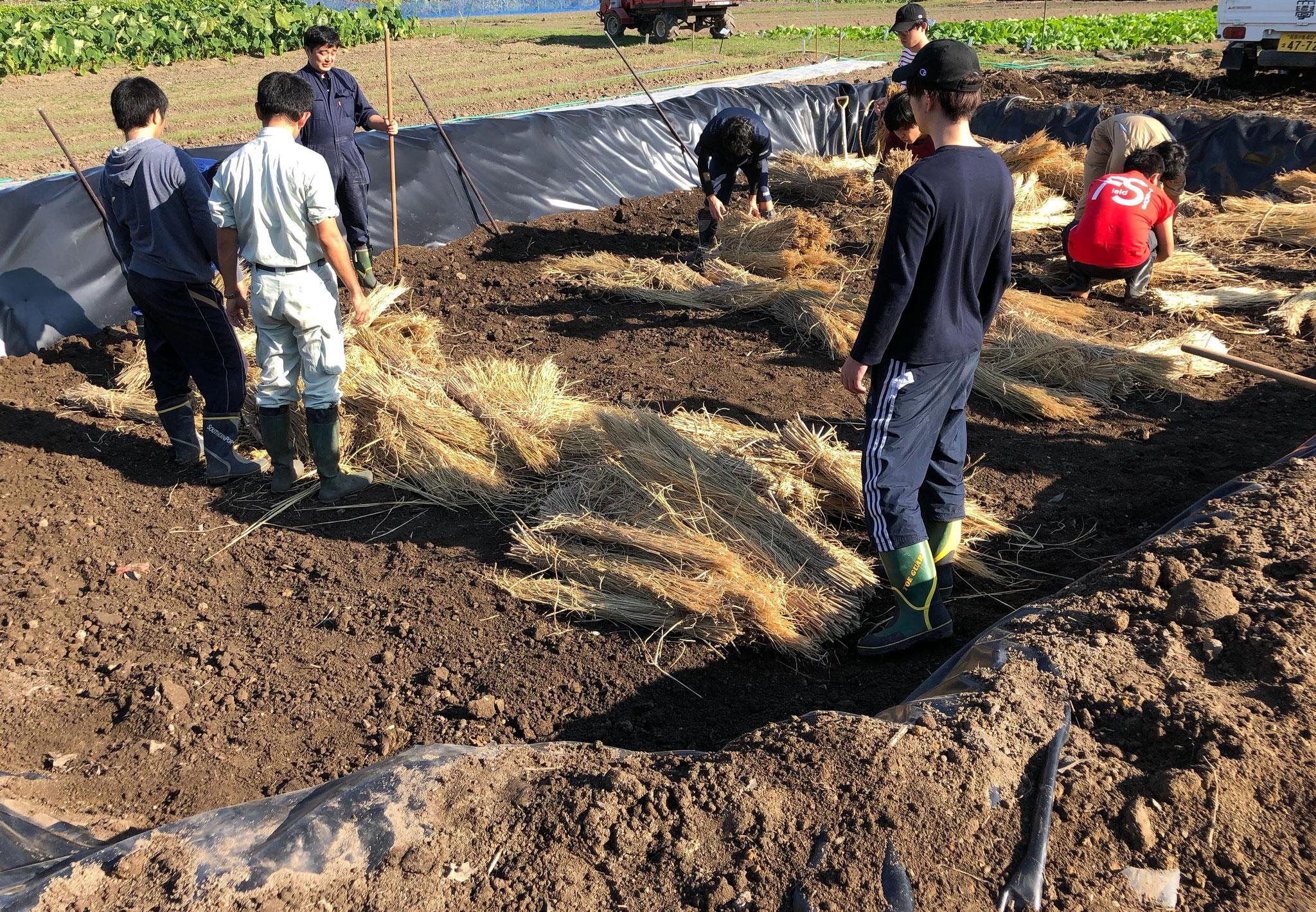 #GETシステム バイオメタンガス(稲わら実験) 風景