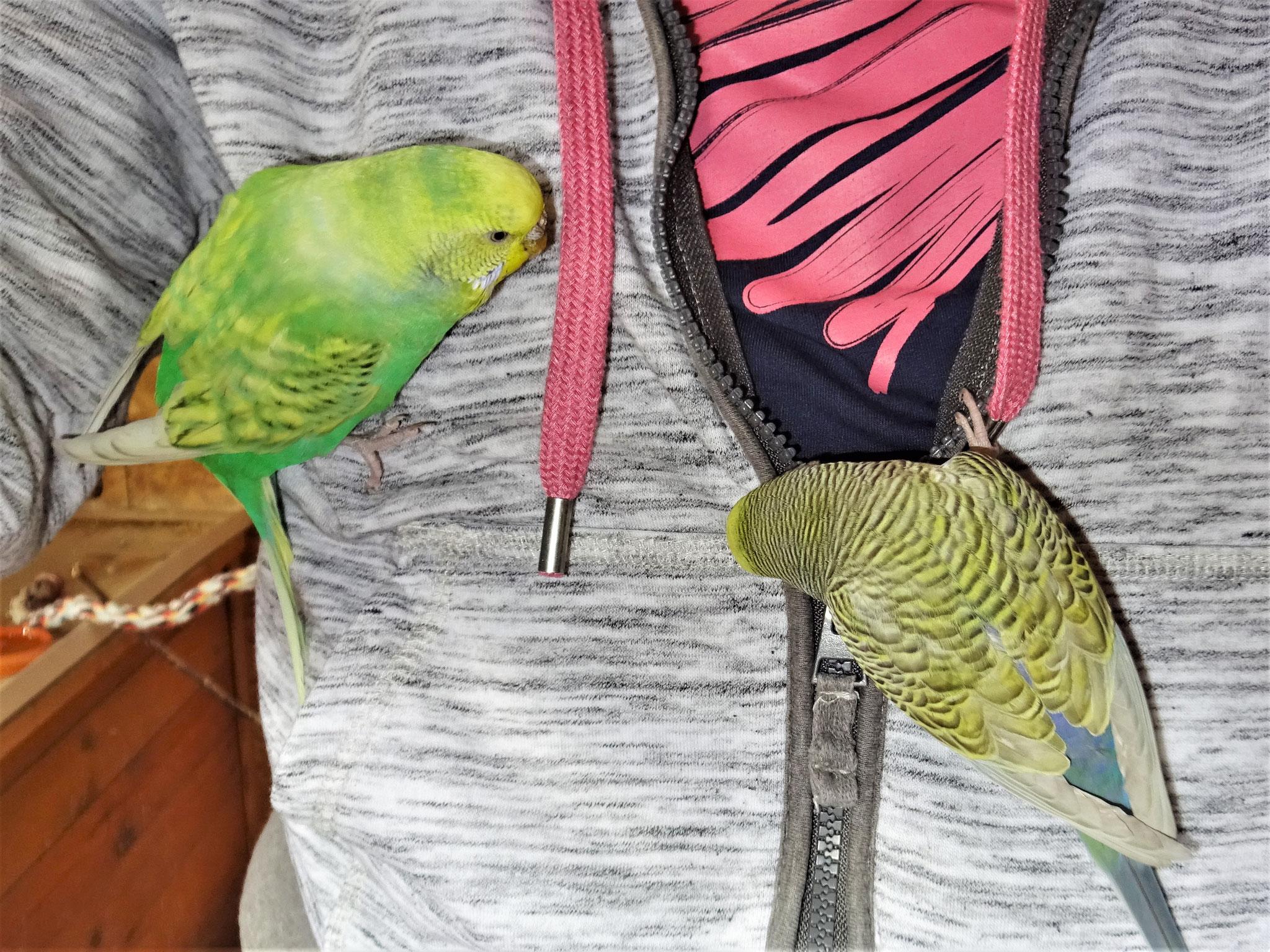 Feli und Tini