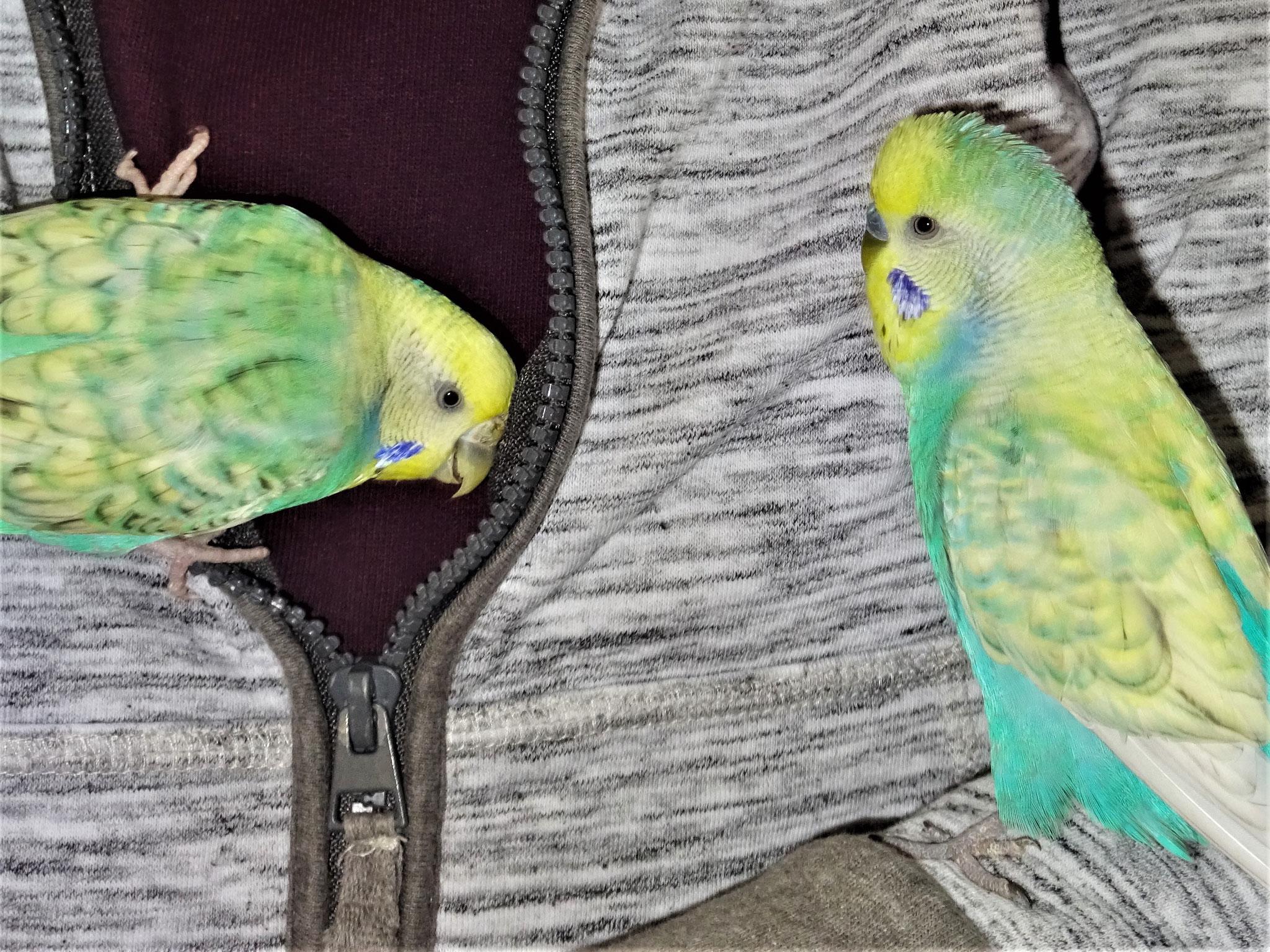 Anni und Flo