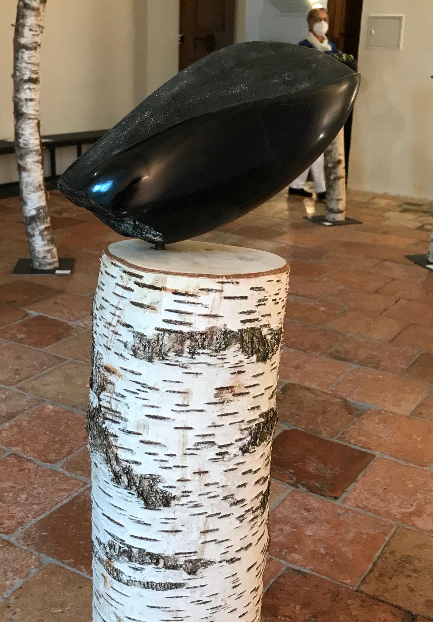 Samenform III / schwarzer Alabaster / Birkenstamm / 130 cm x 30 cm,  © Susanne Musfeldt-Gohm, 2021