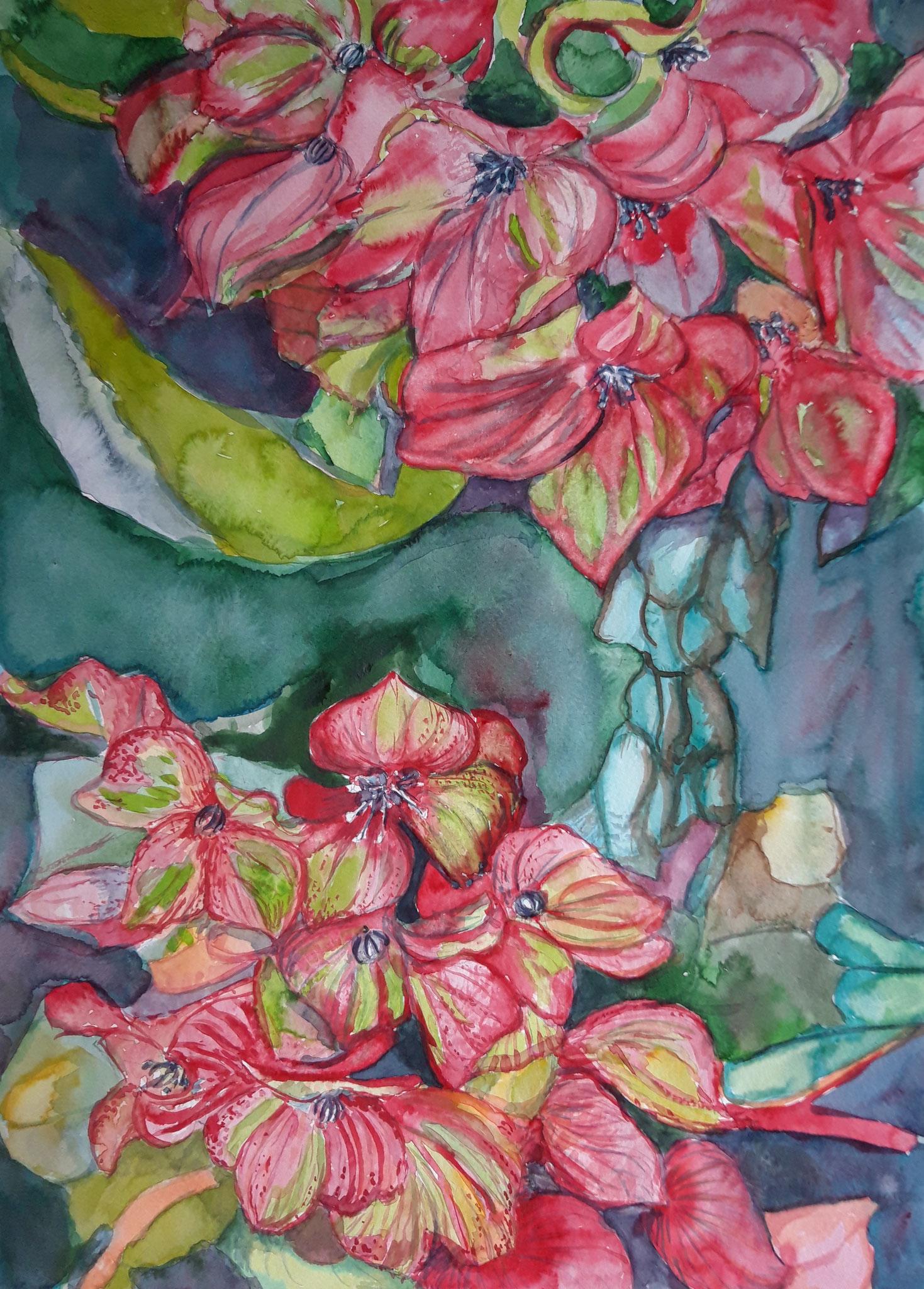 Hortensien 2019, Aquarell auf Bütten, 48 x 36 cm