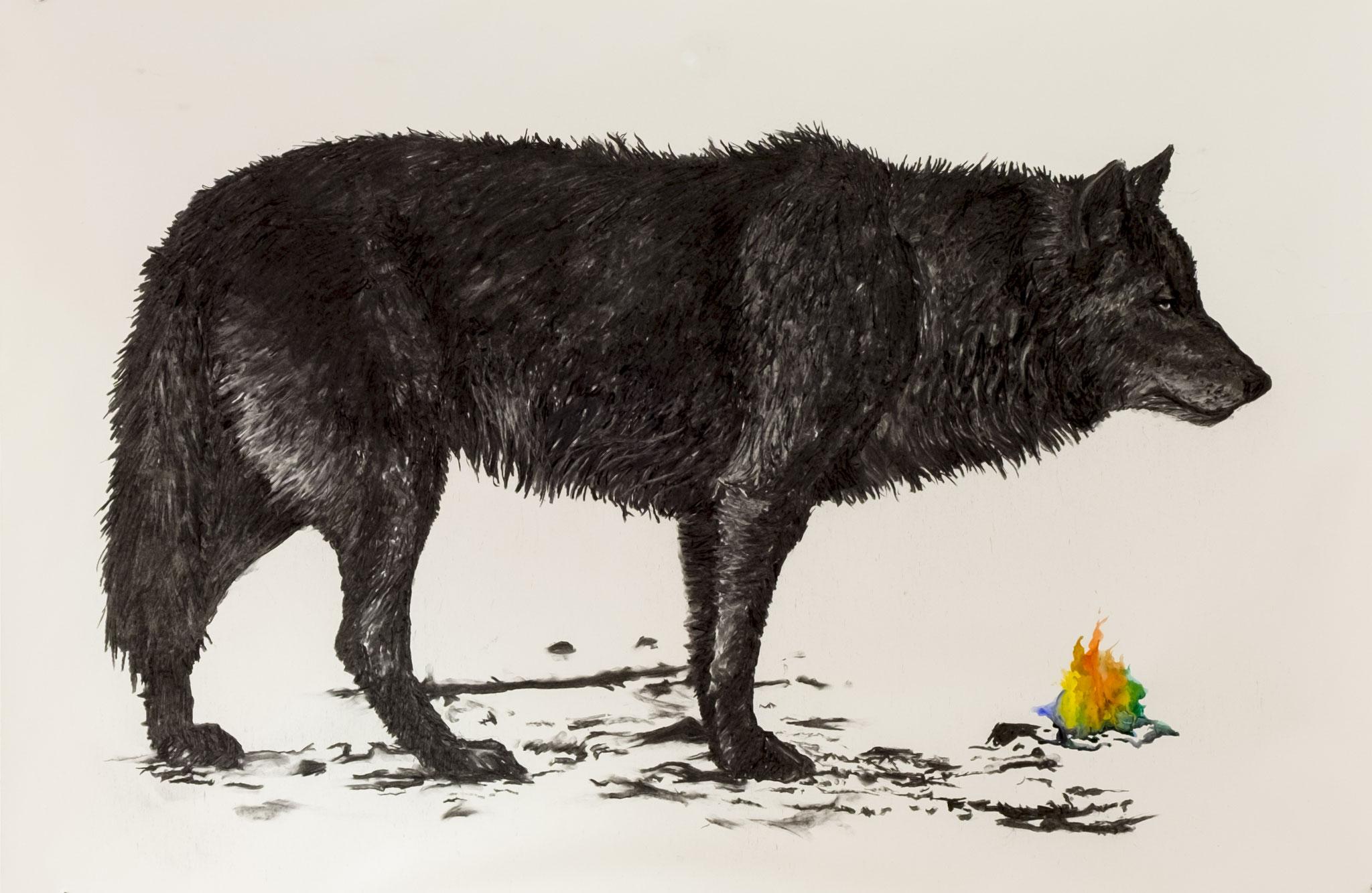 Wolve 100x140cm charcoal, watercolor 2017