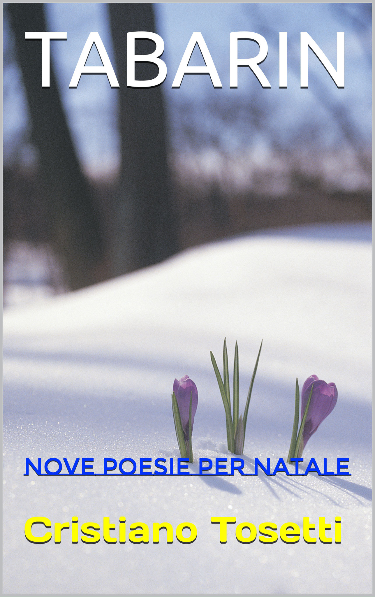 https://www.amazon.it/TABARIN-poesie-Natale-Cristiano-Tosetti-ebook/dp/B077BFLNQQ/ref=sr_1_1?s=digital-text&ie=UTF8&qid=1510647650&sr=1-1&keywords=tabarin
