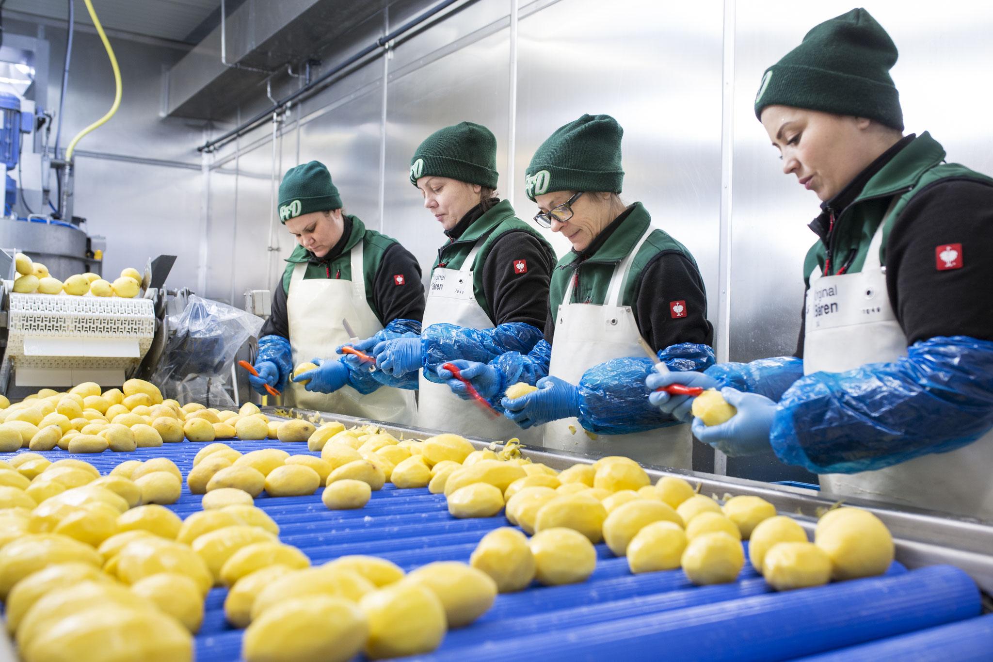 Nacharbeitung der geschälten Kartoffeln