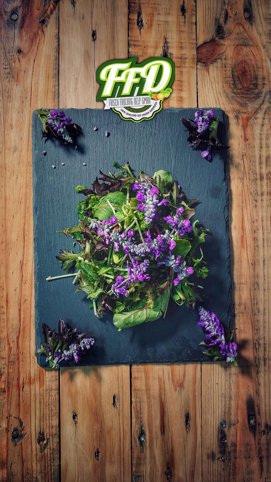 Wildkräutersalat purple