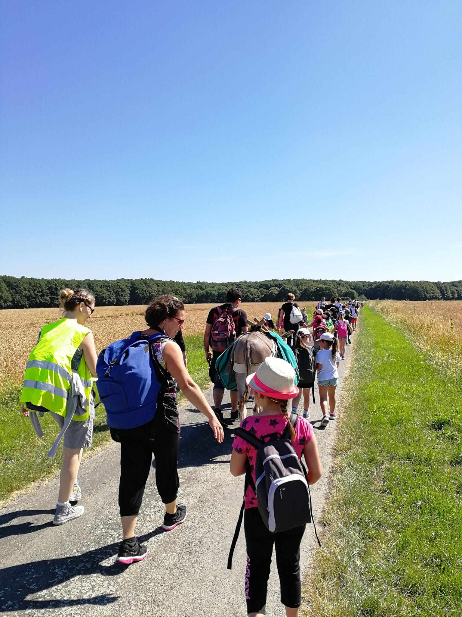 Randonnée en âne bâté clown en Touraine Val de Loire - sortie scolaire et comité d'entreprises