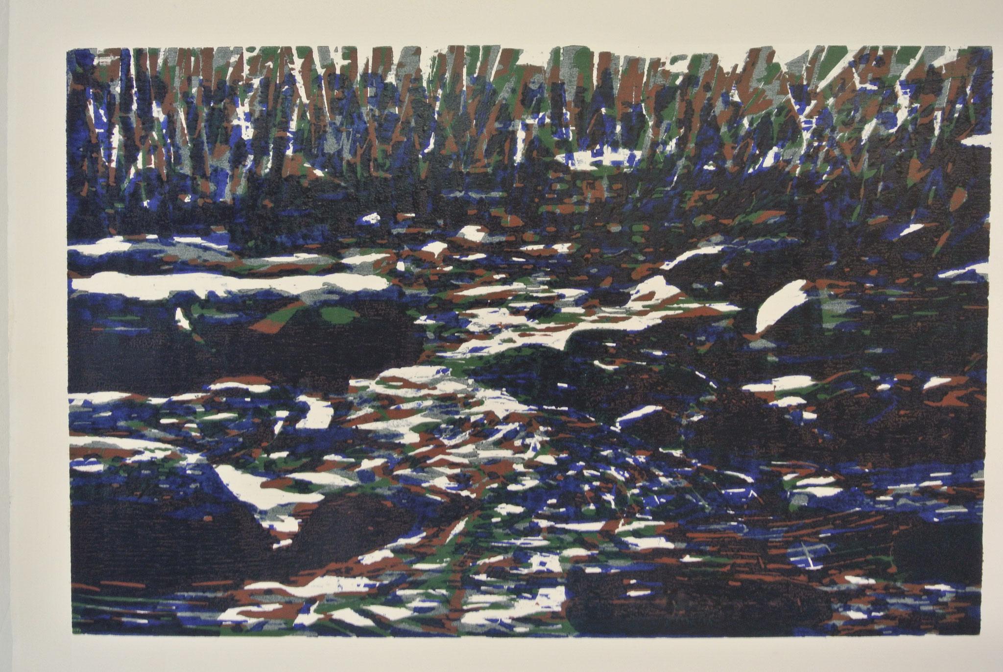 """""""Wildes Wasser"""",  Holzschnitt ca. 60cm x 45cm (verlorene Platte)"""
