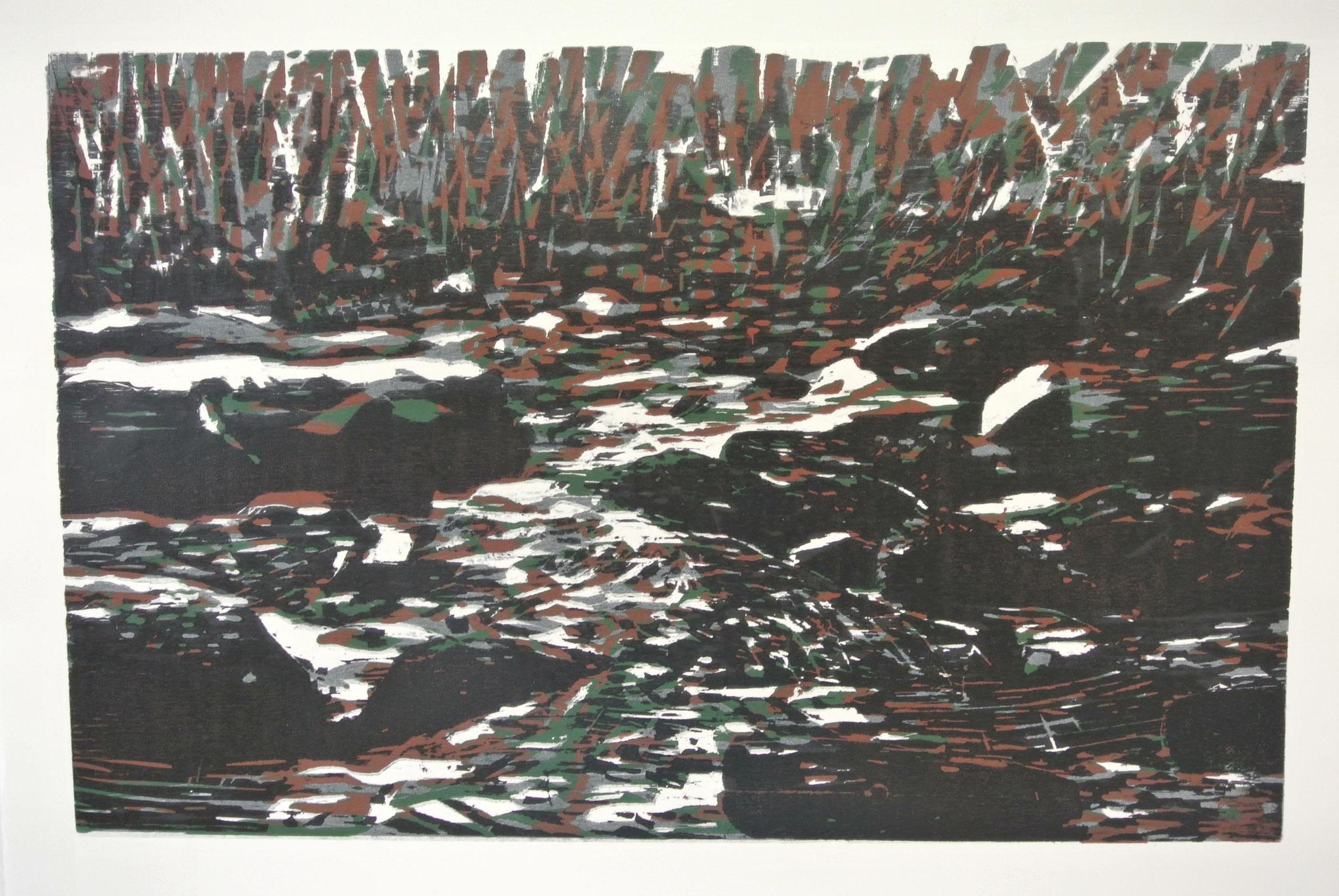 """""""Wildes Wasser_2"""" Holzschnitt ca. 60cm x 45cm (verlorene Platte)"""