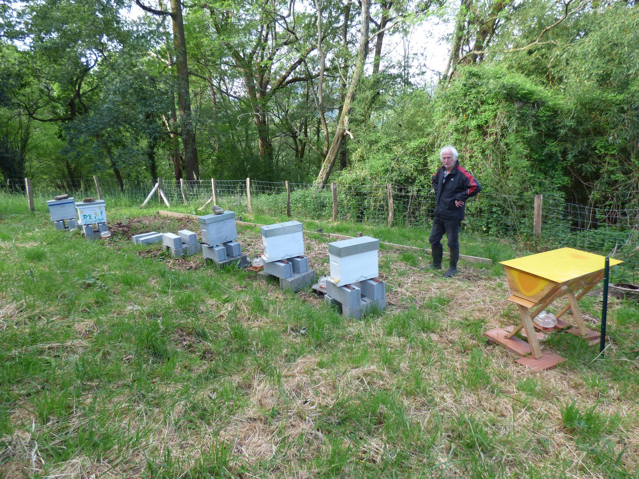 Les ruchettes sont à la Bergerie