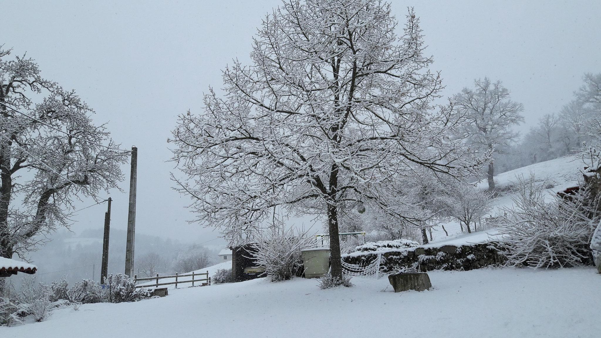 l hiver à saint Martin quand il y a de la neige!