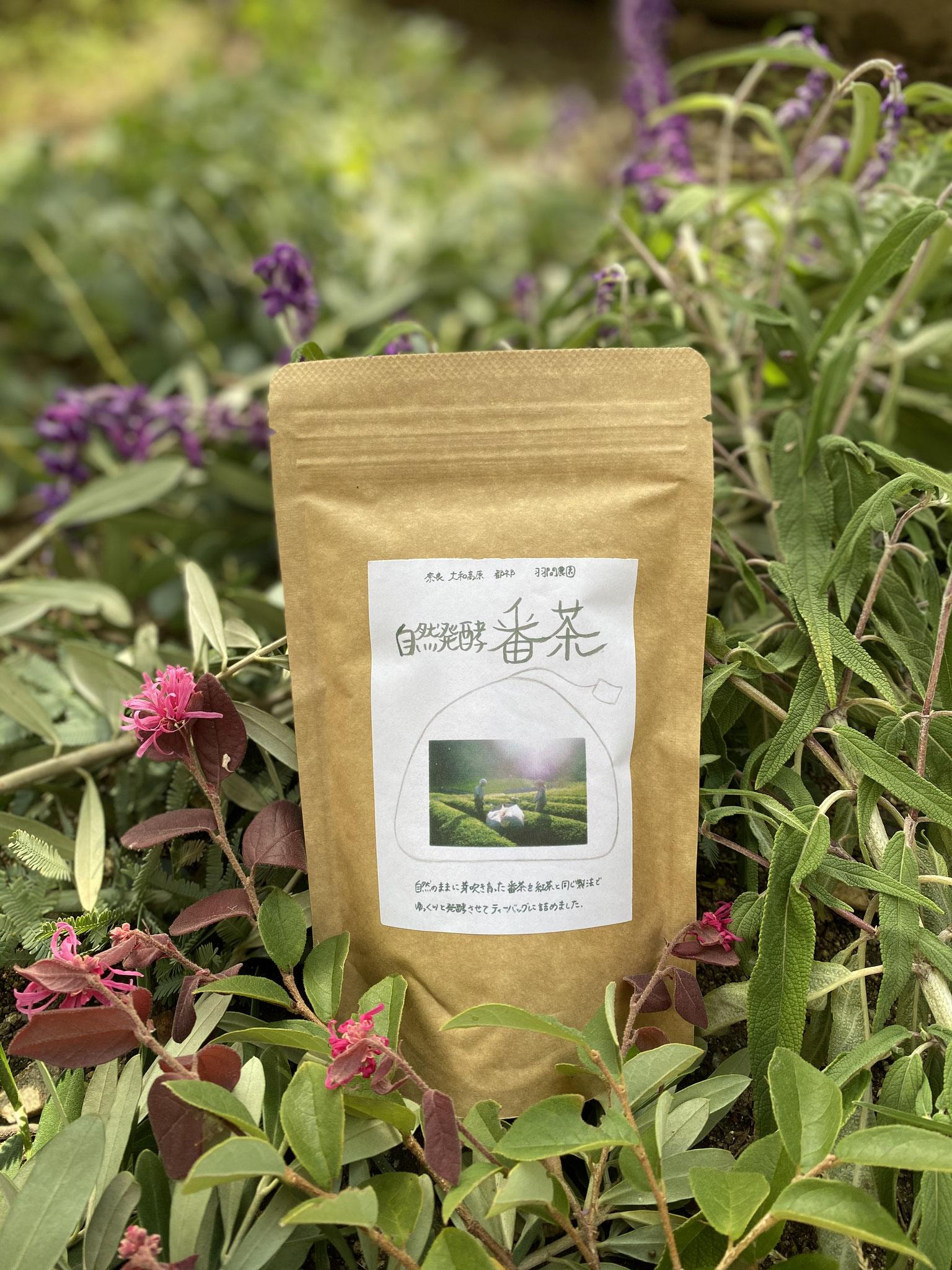 羽間農園自然発酵番茶