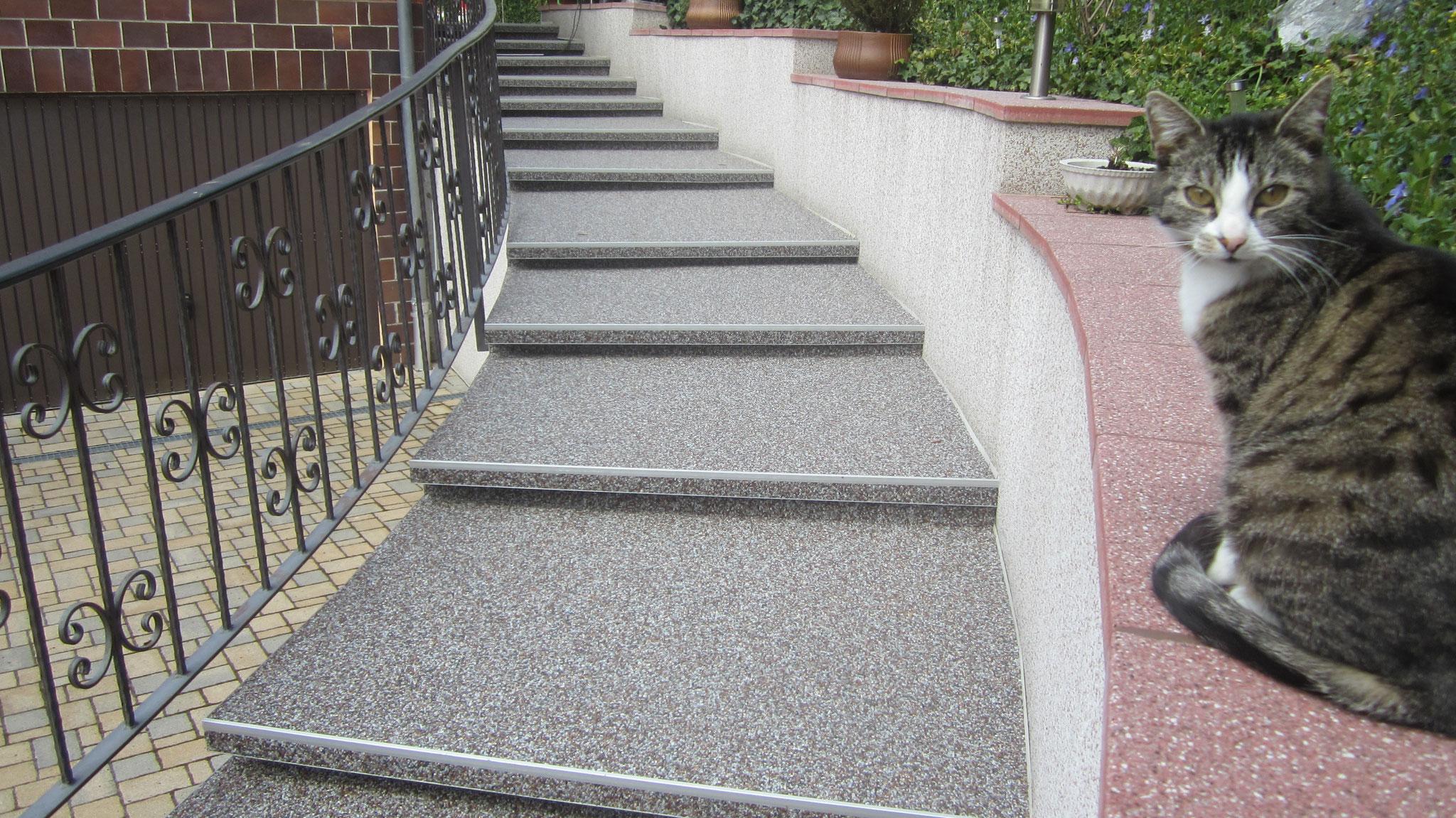 Steinteppich Sachsen Treppensanierung